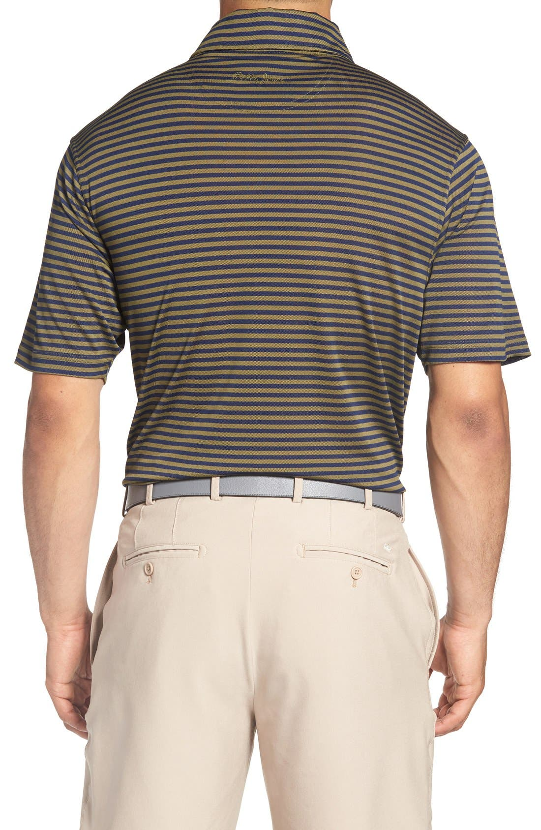 XH2O Feed Stripe Stretch Golf Polo,                             Alternate thumbnail 24, color,