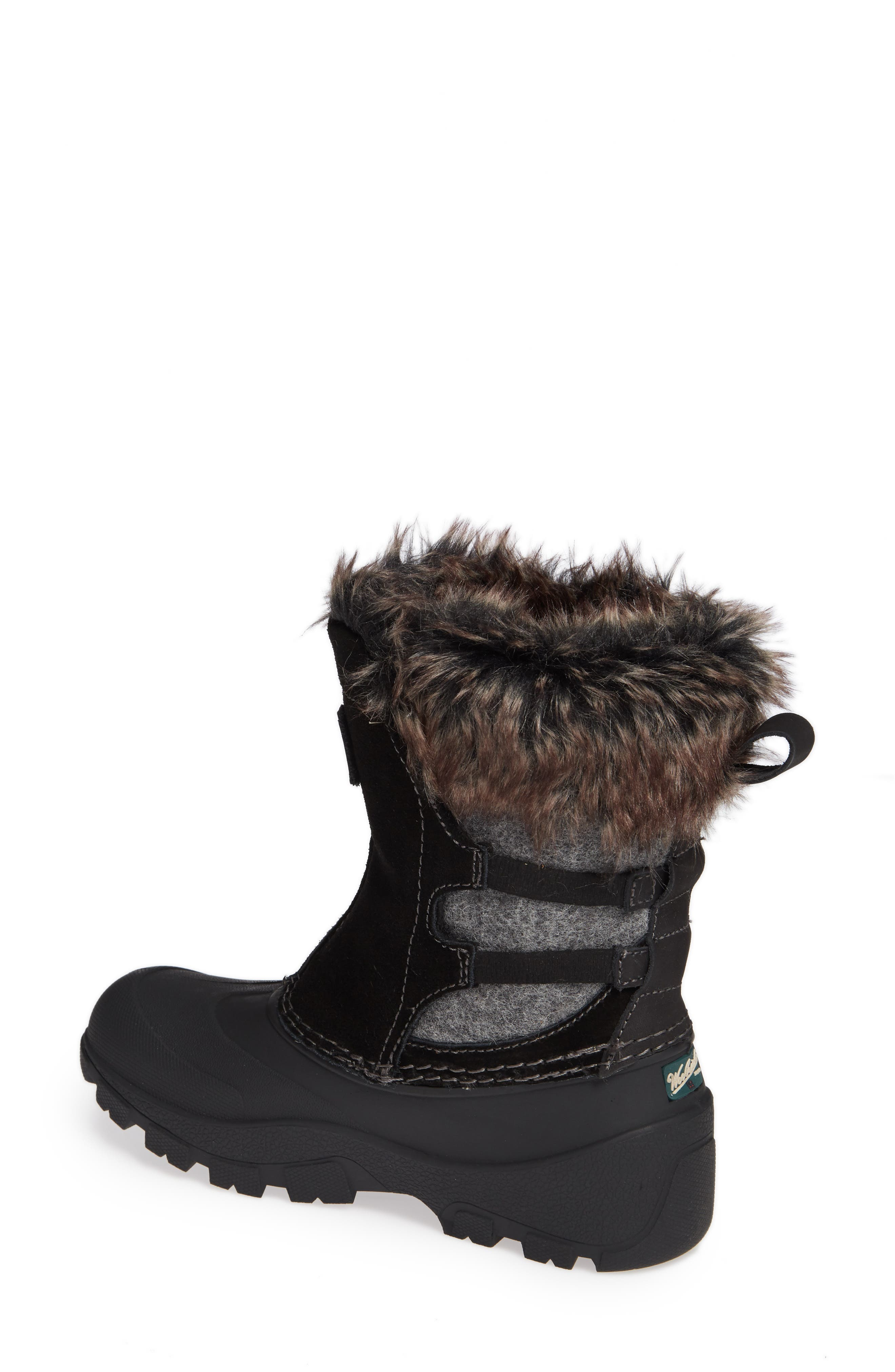 Icecat II Fully Wooly Waterproof Insulated Winter Boot,                             Alternate thumbnail 2, color,                             BLACK WOOL