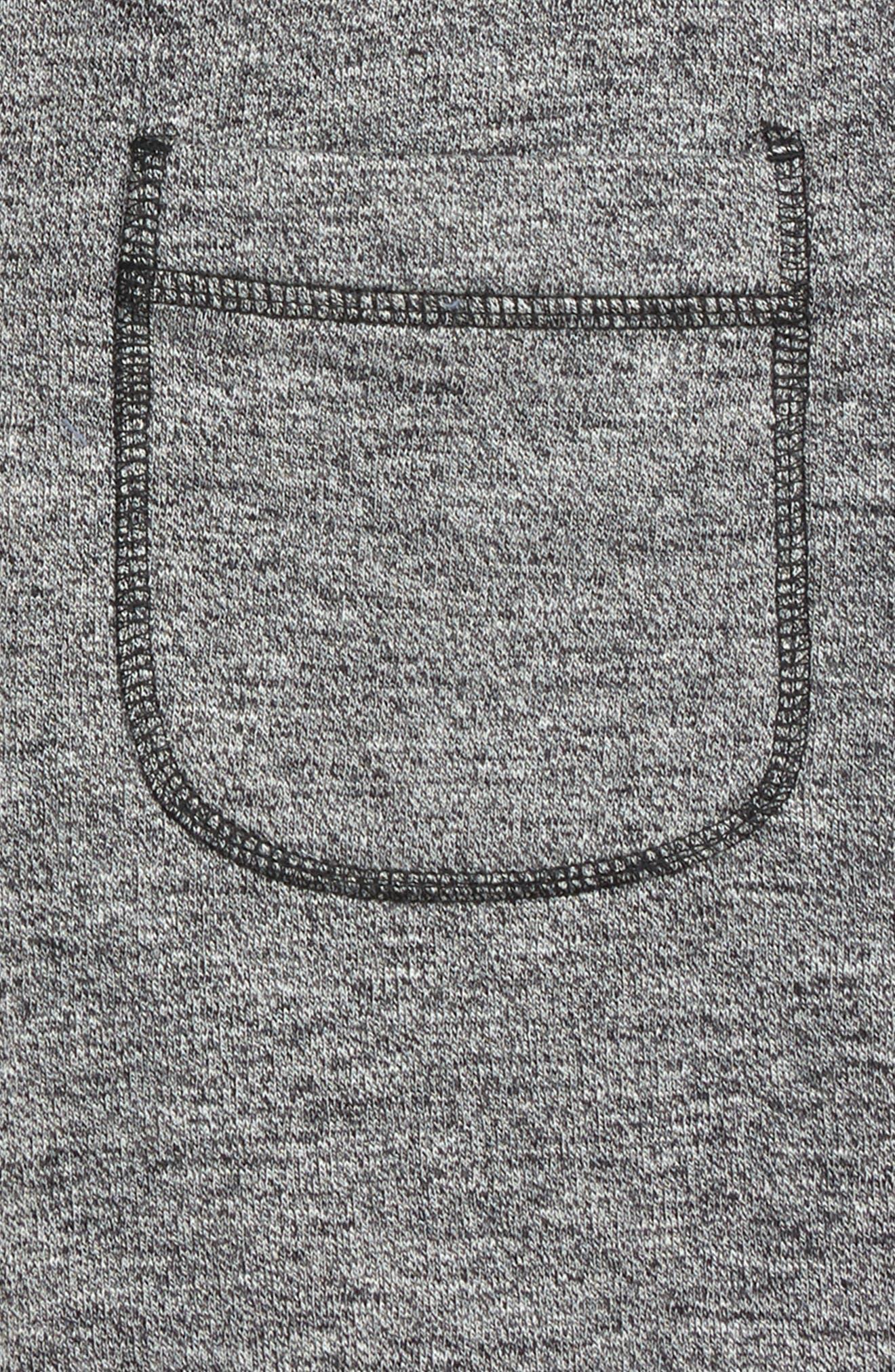 Fleece Knit Shorts,                             Alternate thumbnail 3, color,                             030