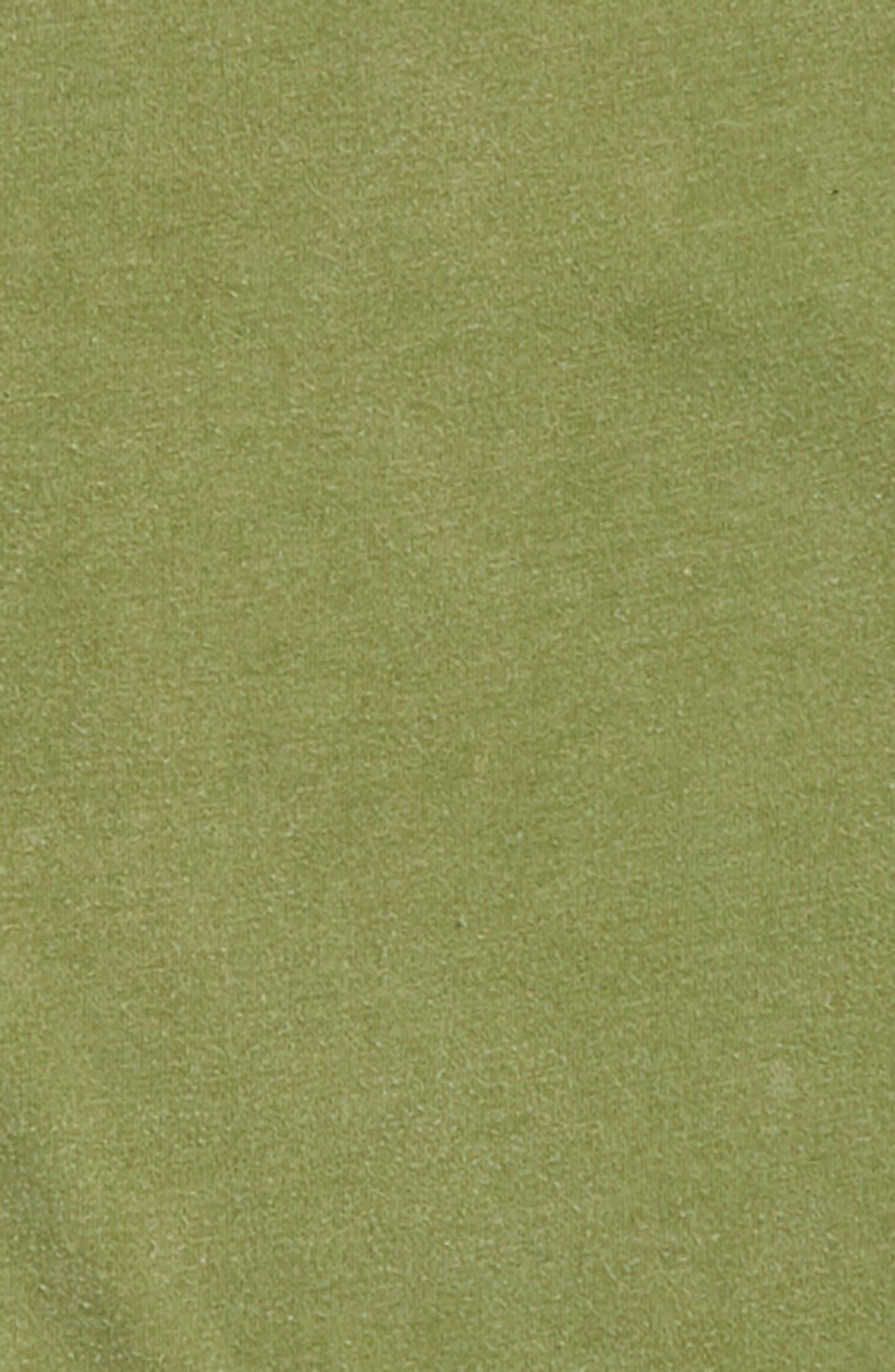 Snow Wash T-Shirt,                             Alternate thumbnail 2, color,                             OLIVE