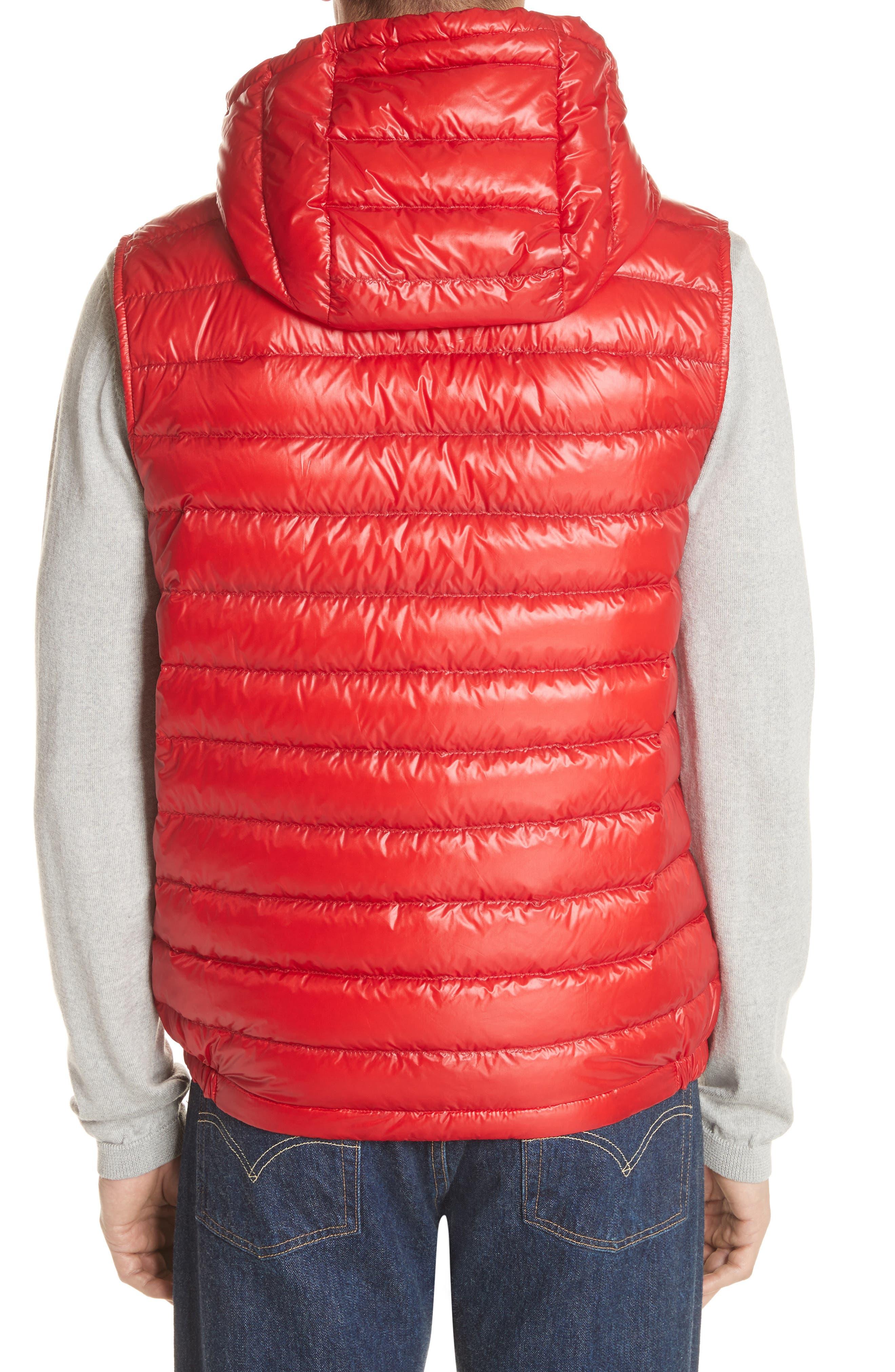 Gien Down Hooded Vest,                             Alternate thumbnail 2, color,                             601