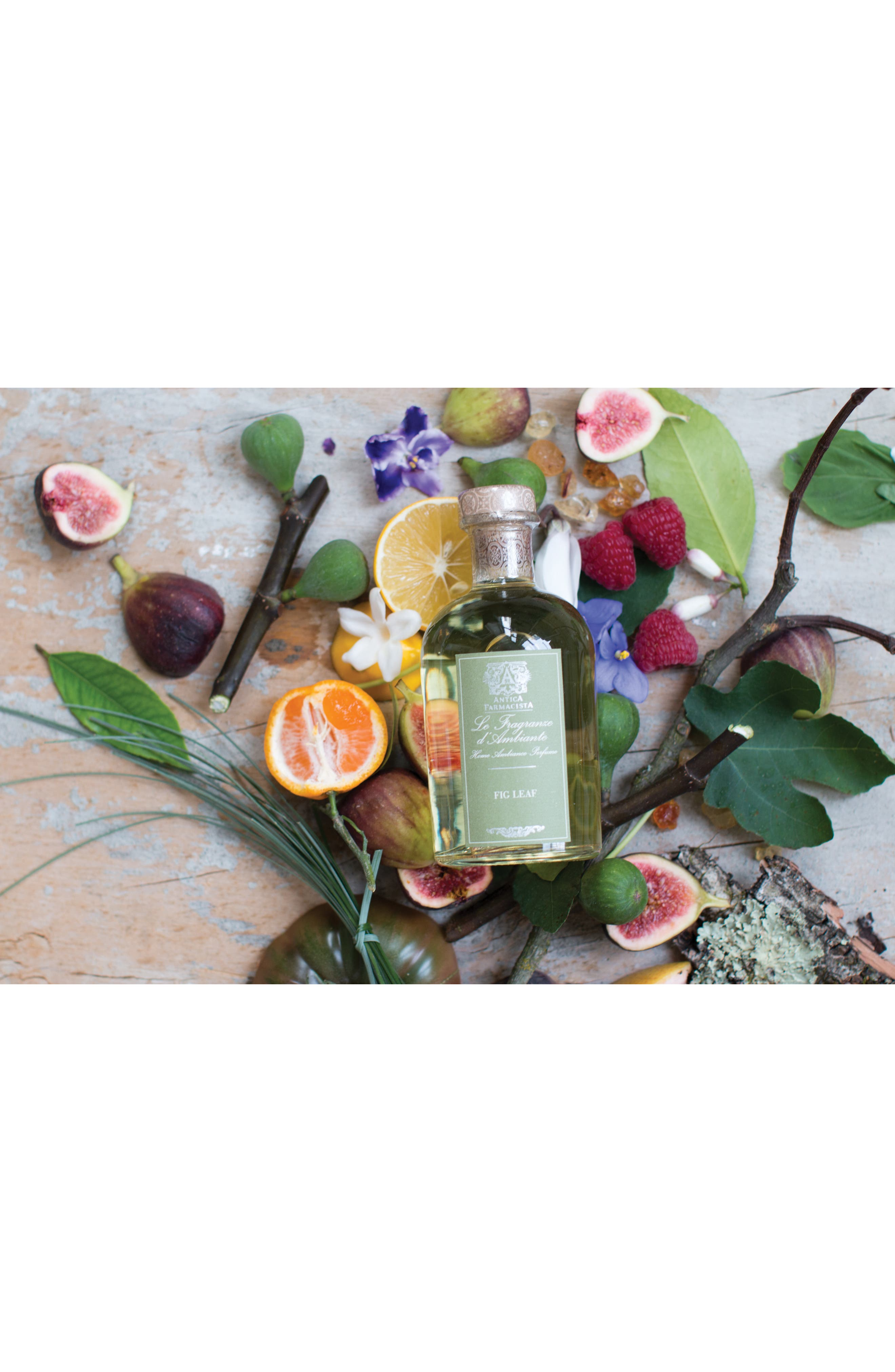 Fig Leaf Home Ambiance Perfume,                             Alternate thumbnail 3, color,                             NO COLOR