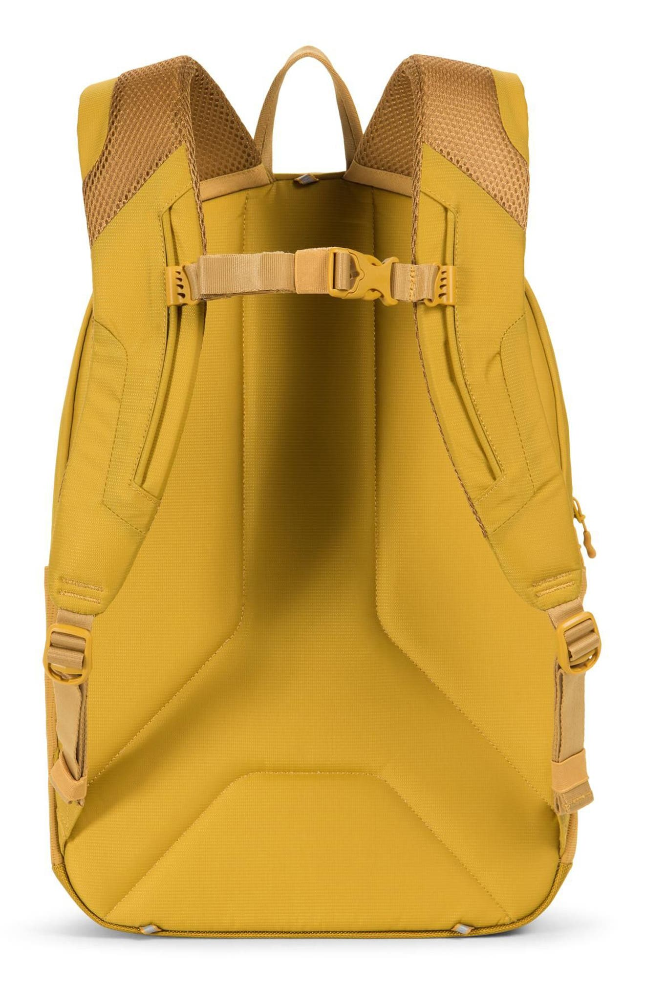 Rundle Trail Backpack,                             Alternate thumbnail 14, color,