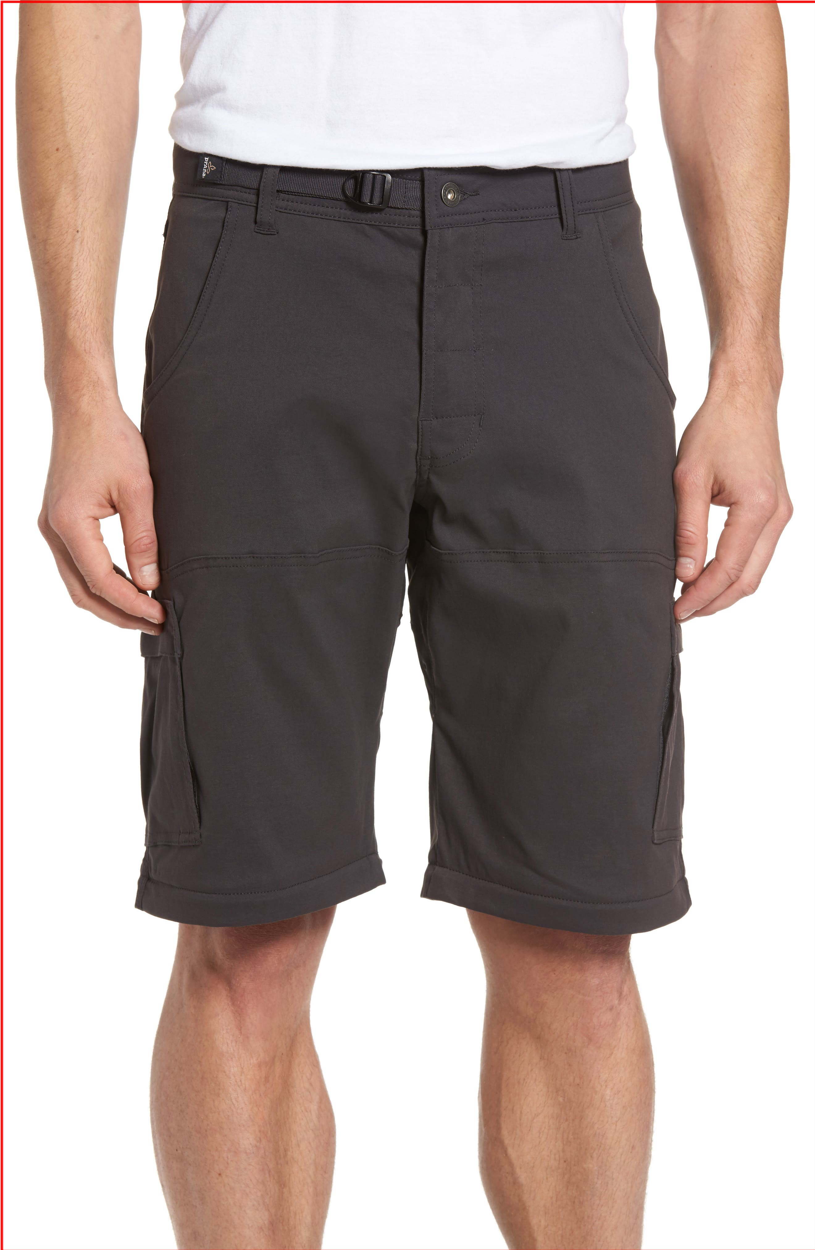 Zion Stretch Convertible Cargo Hiking Pants,                             Alternate thumbnail 4, color,                             010