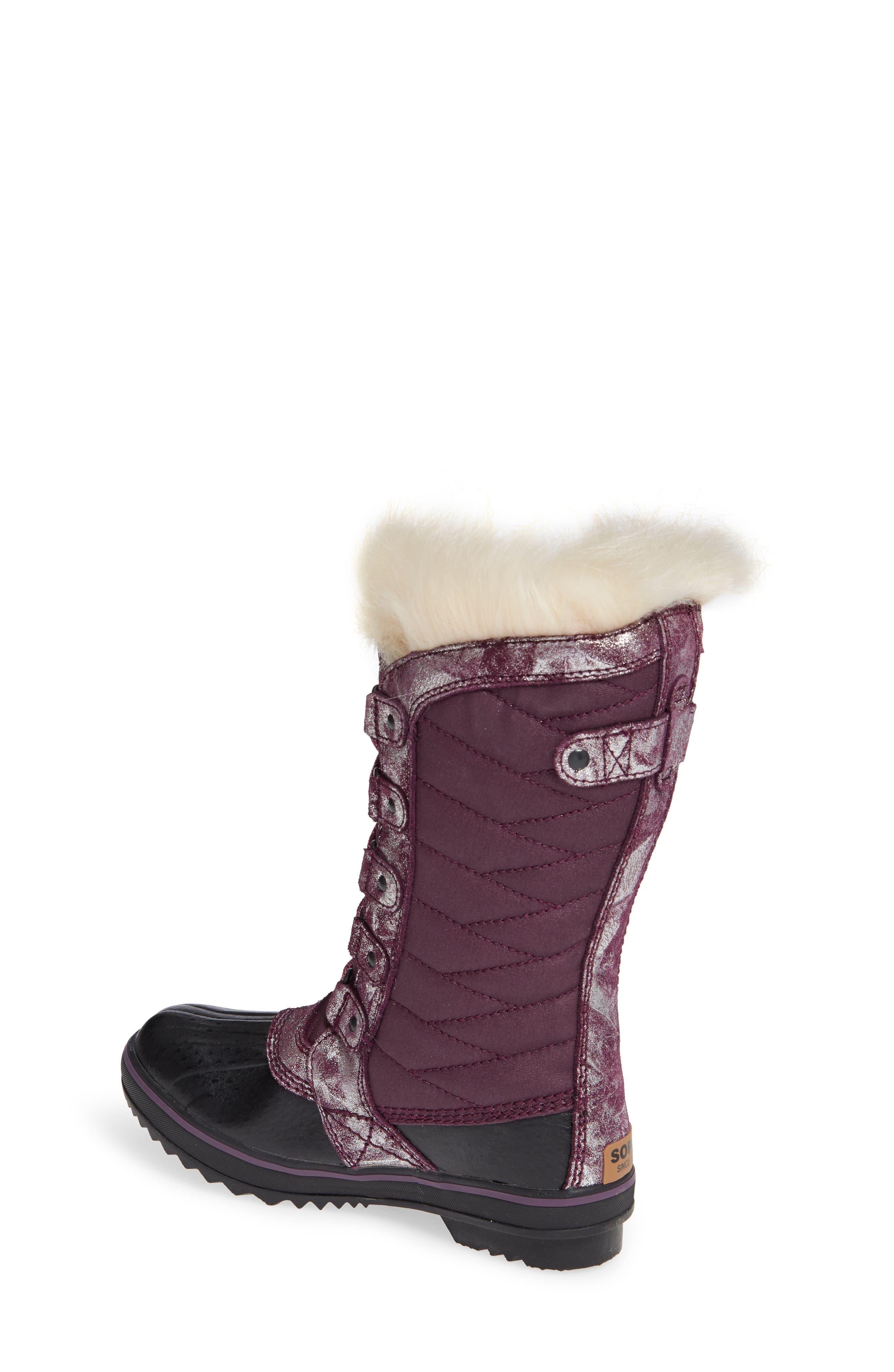Tofino II Faux Fur Lined Waterproof Boot,                             Alternate thumbnail 2, color,                             562