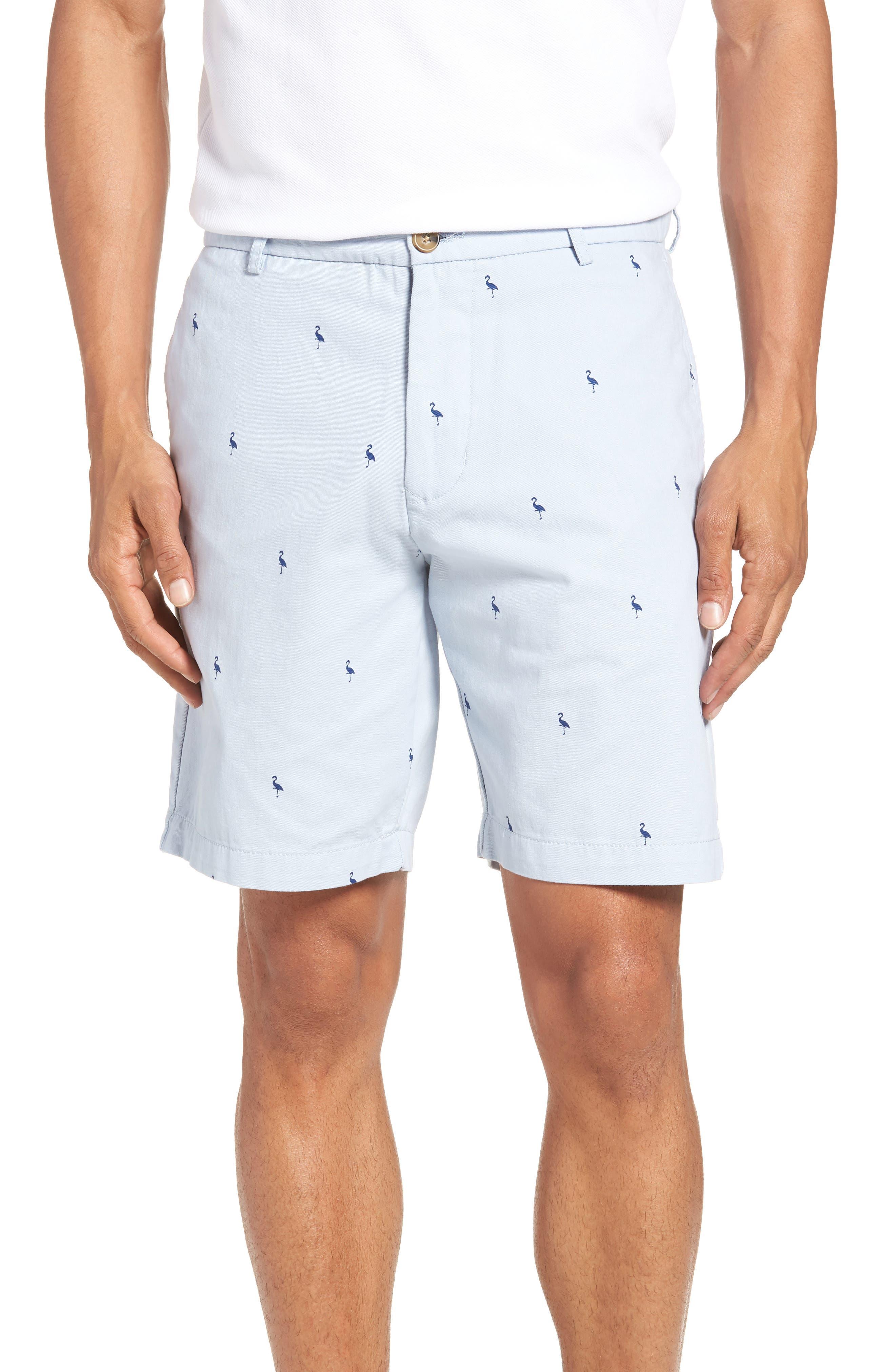 Aiden Bird Regular Fit Chino Shorts,                             Main thumbnail 1, color,