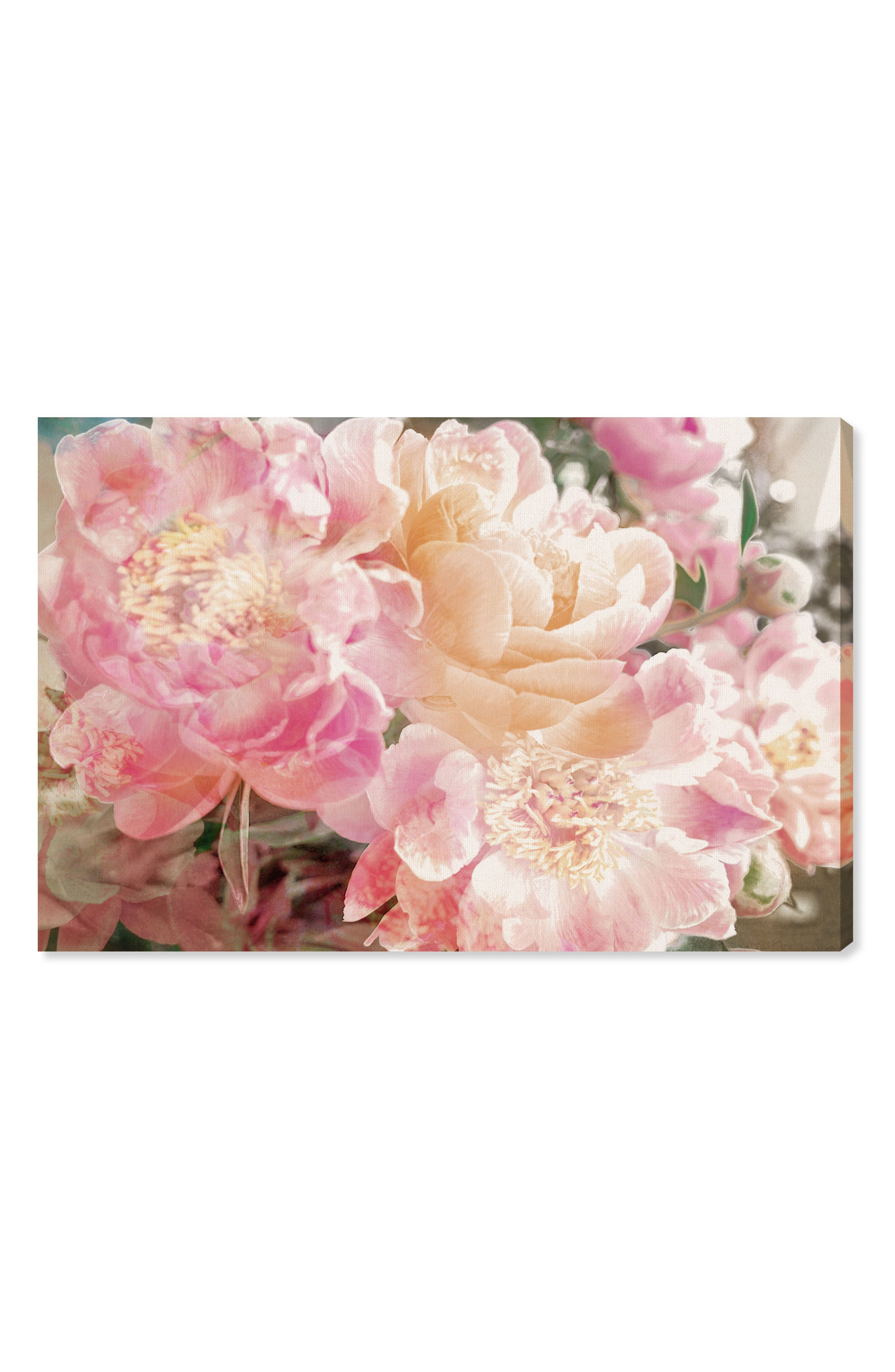 Peonies Canvas Wall Art,                         Main,                         color, PINK