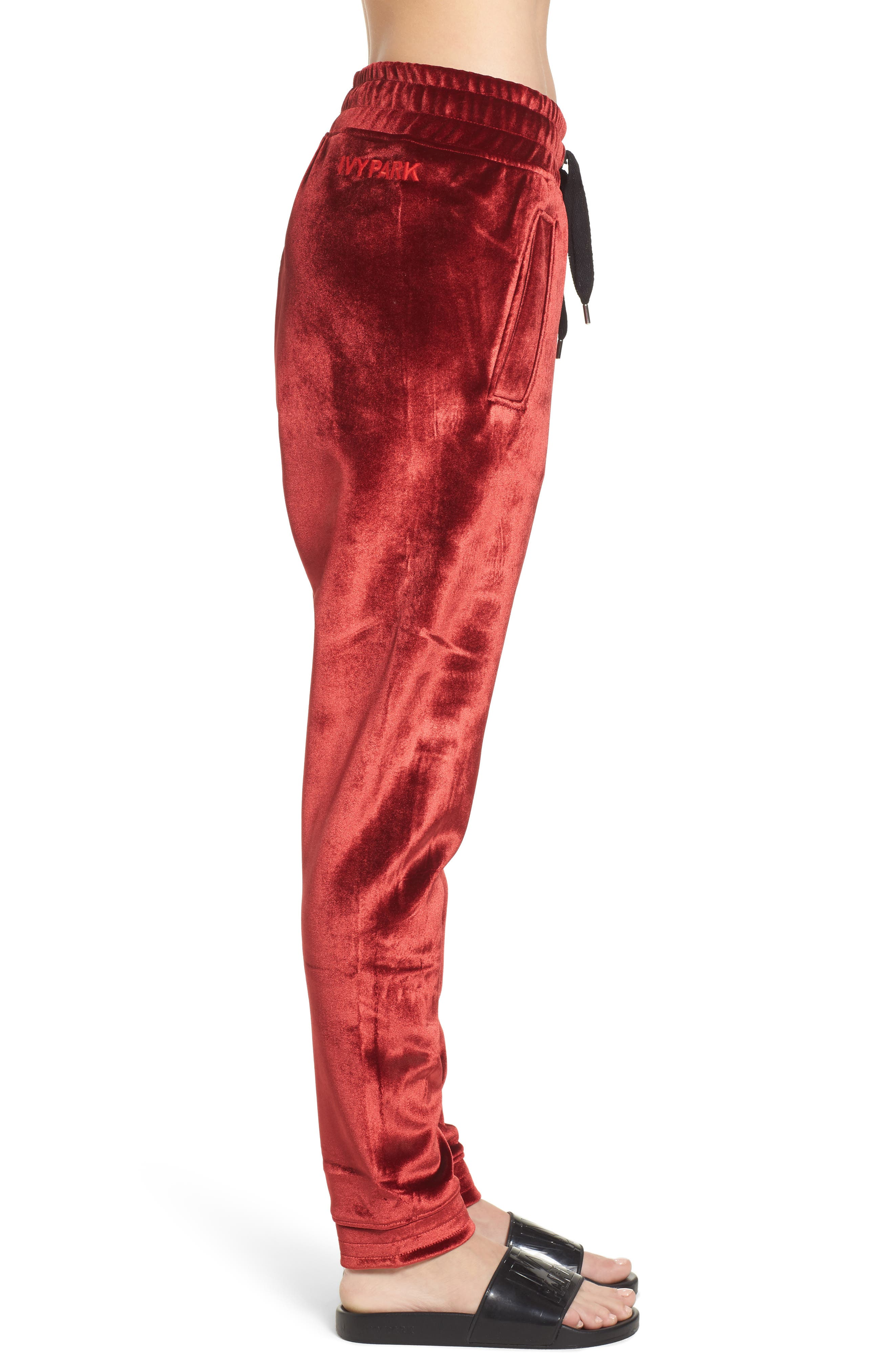 Velvet Jogger Pants,                             Alternate thumbnail 3, color,                             600