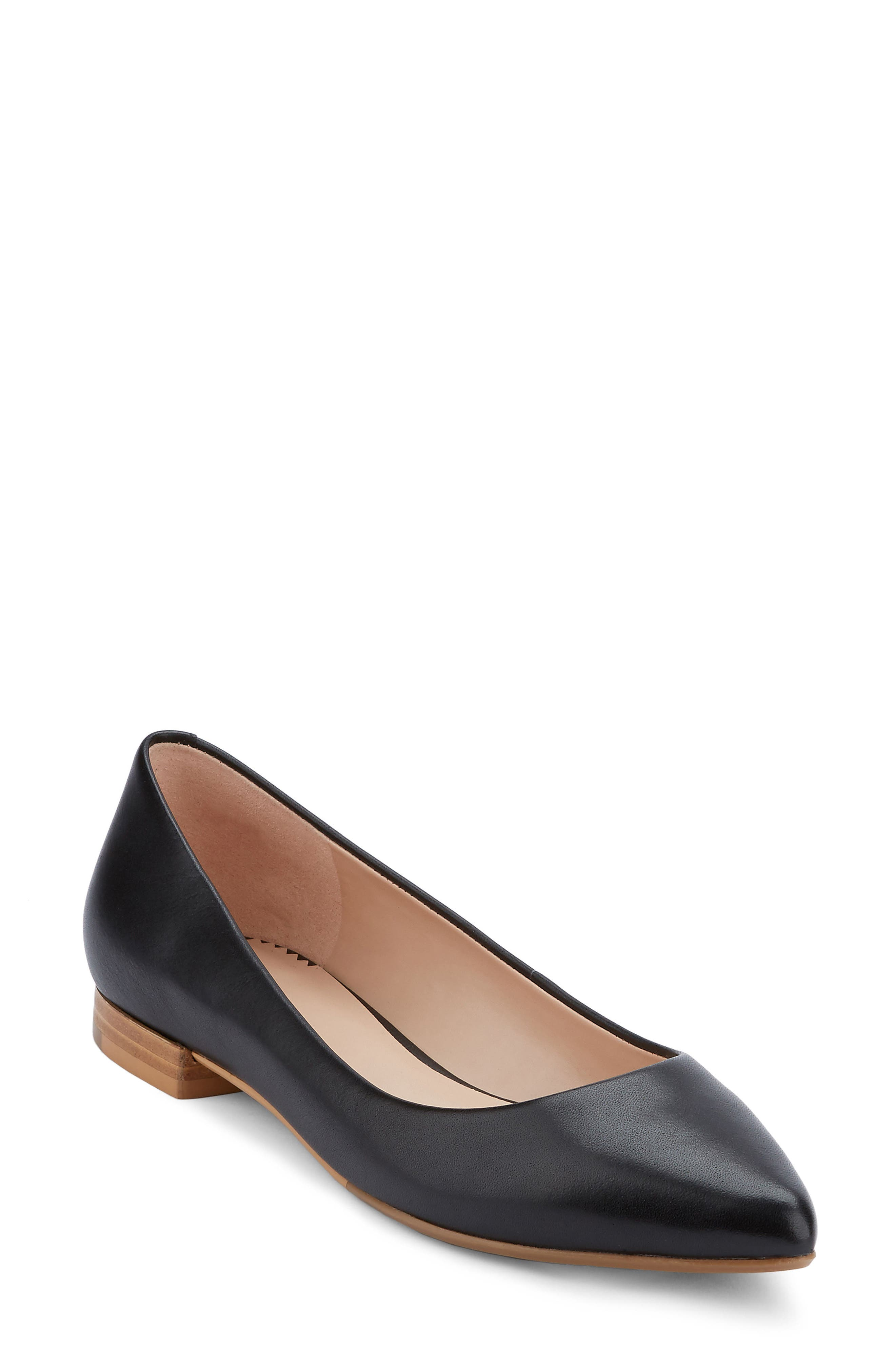 Kayla Pointy Toe Flat,                         Main,                         color, 001