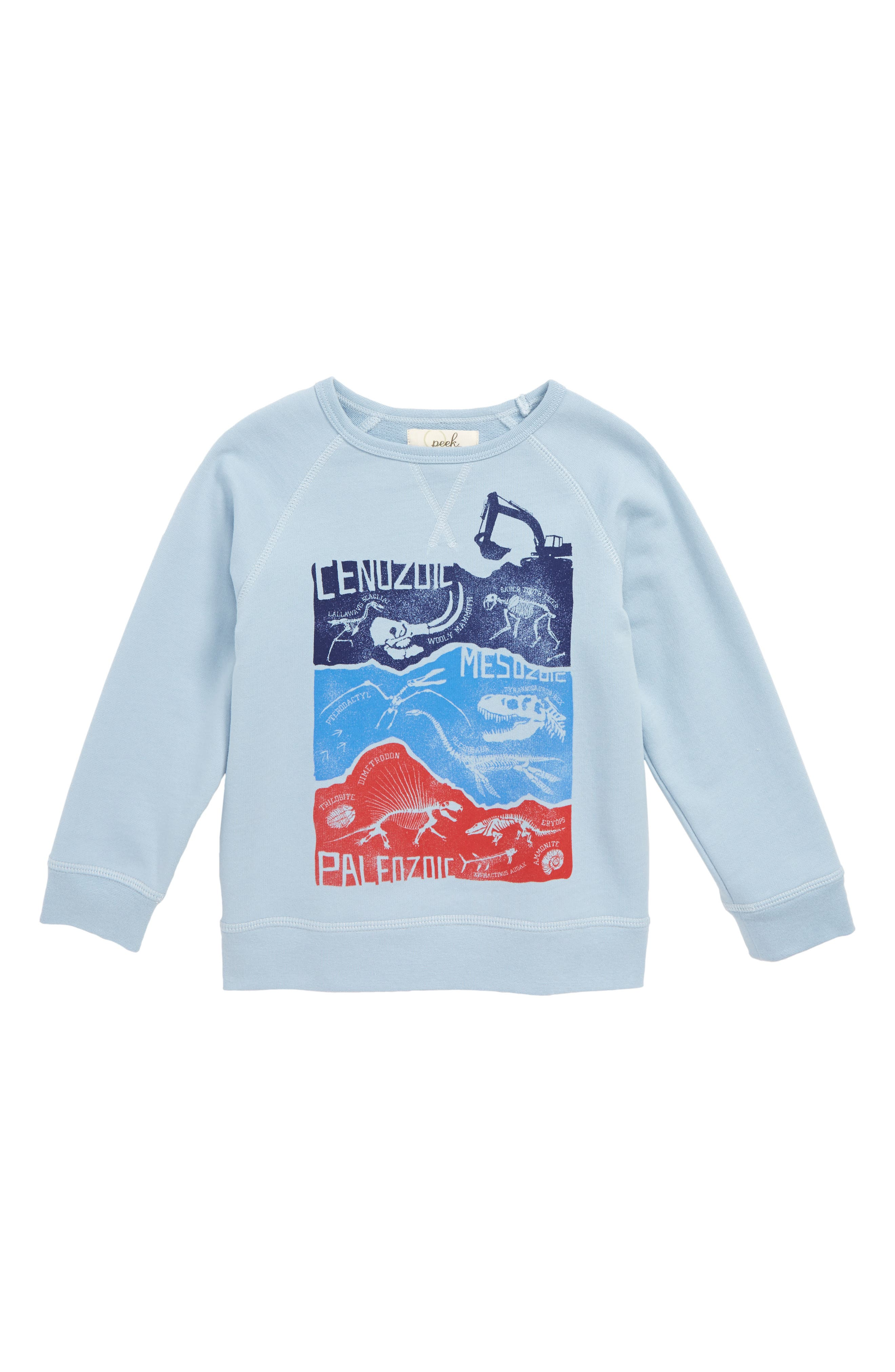 Dino Graphic Pullover,                             Main thumbnail 1, color,                             400