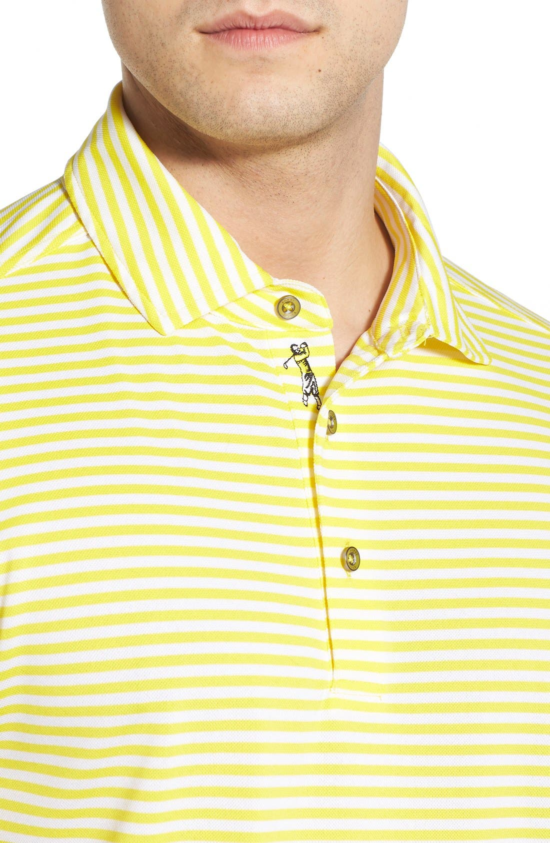 XH2O Feed Stripe Stretch Golf Polo,                             Alternate thumbnail 75, color,