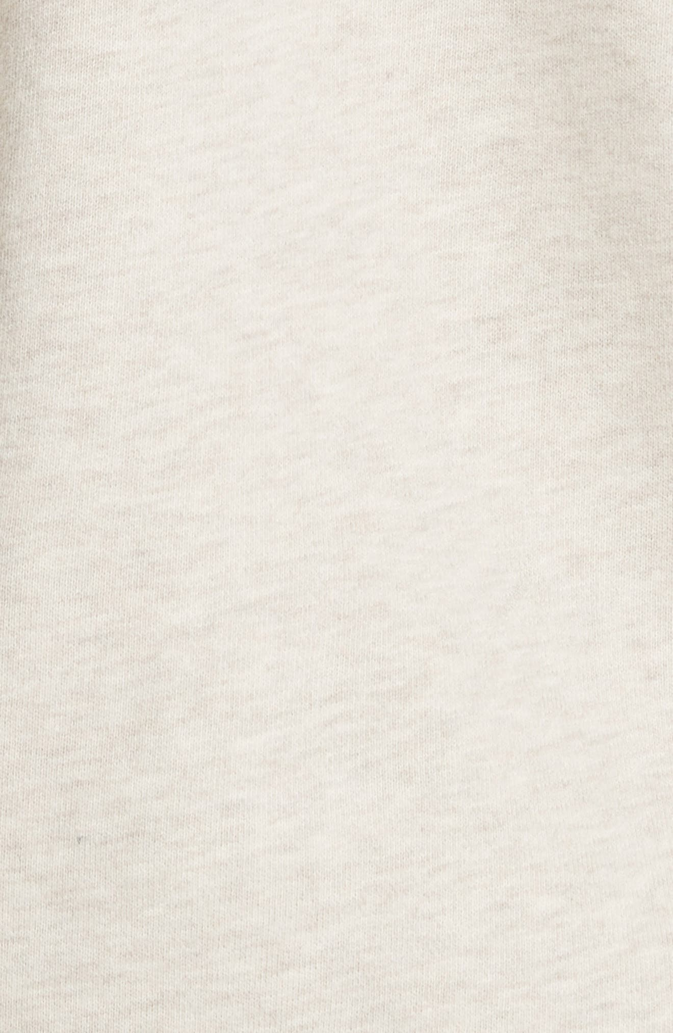Half Zip Cotton Hoodie Sweatshirt,                             Alternate thumbnail 5, color,                             255