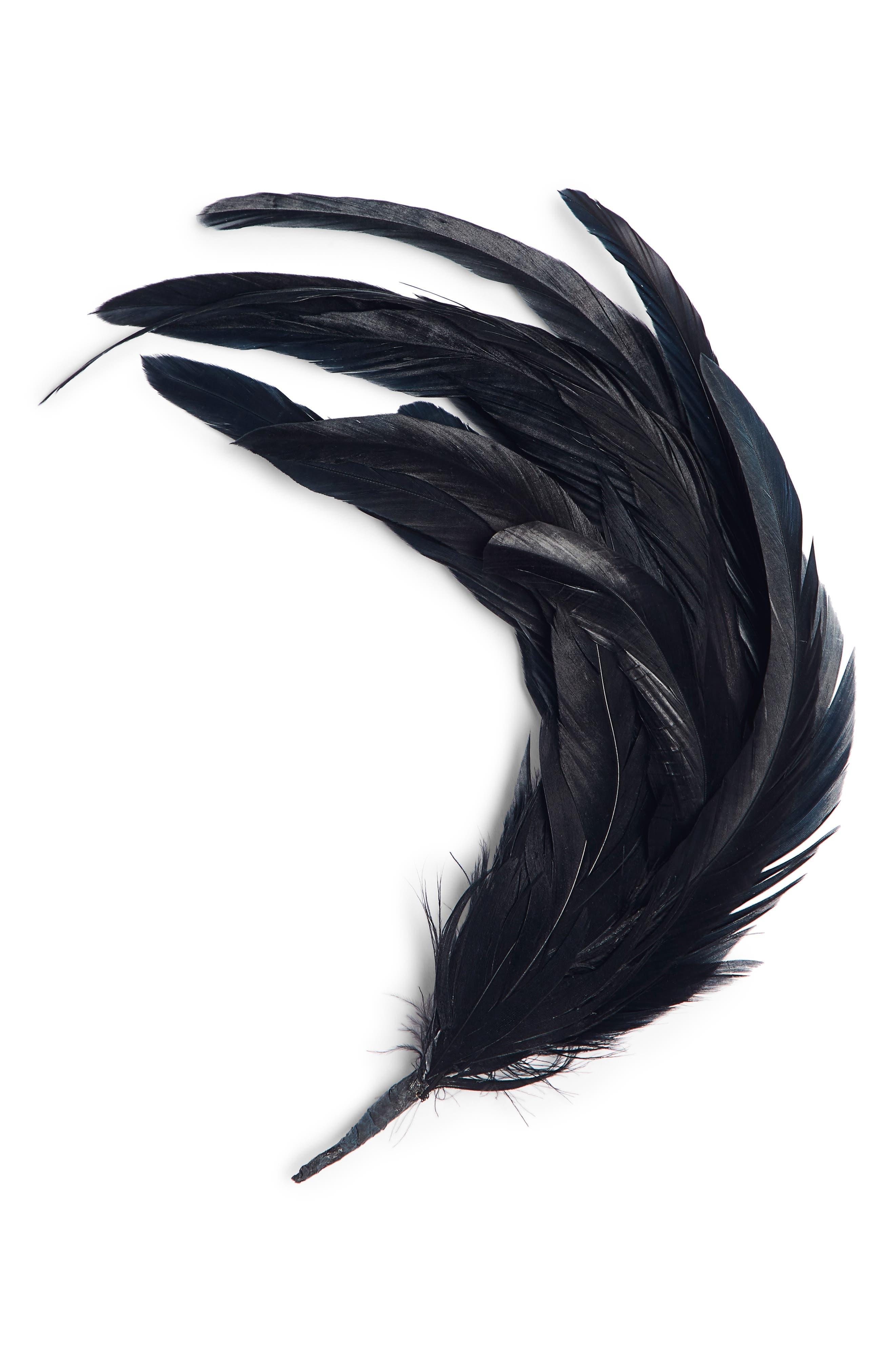 DRIES VAN NOTEN Feather Brooch, Main, color, BLACK