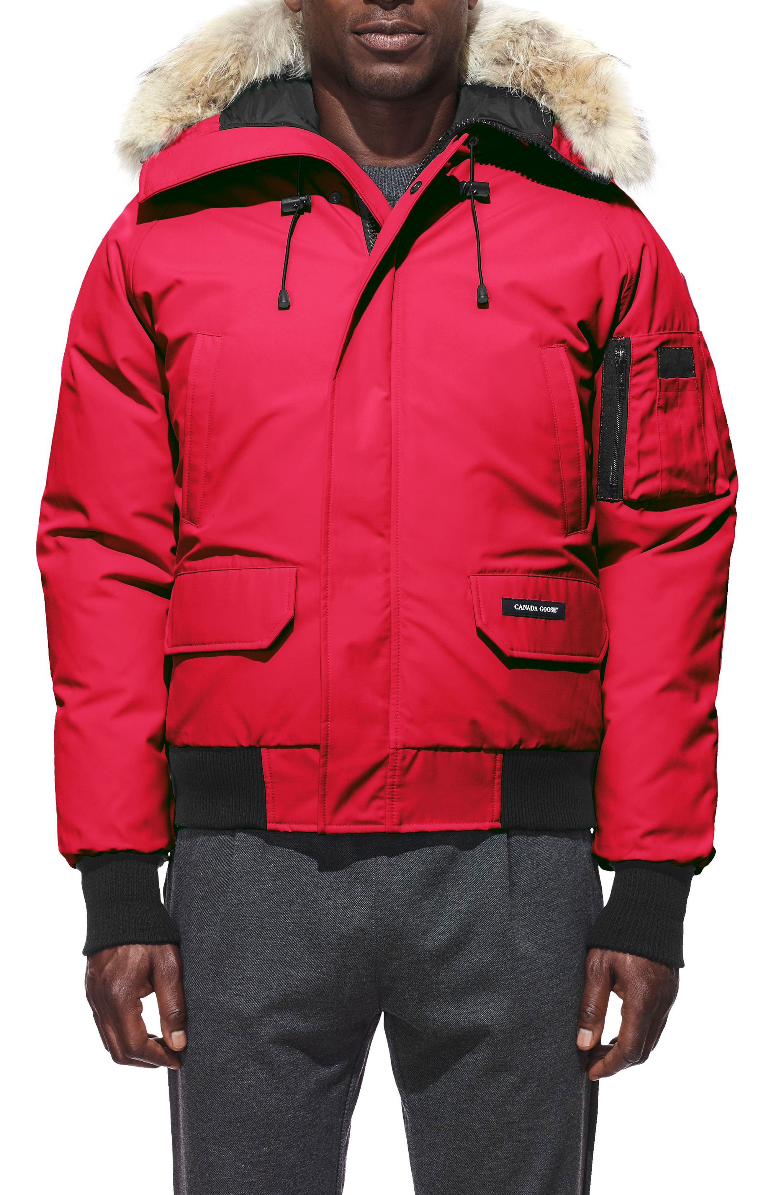 PBI Chilliwack Regular Fit Down Bomber Jacket with Genuine Coyote Trim,                         Main,                         color, RED