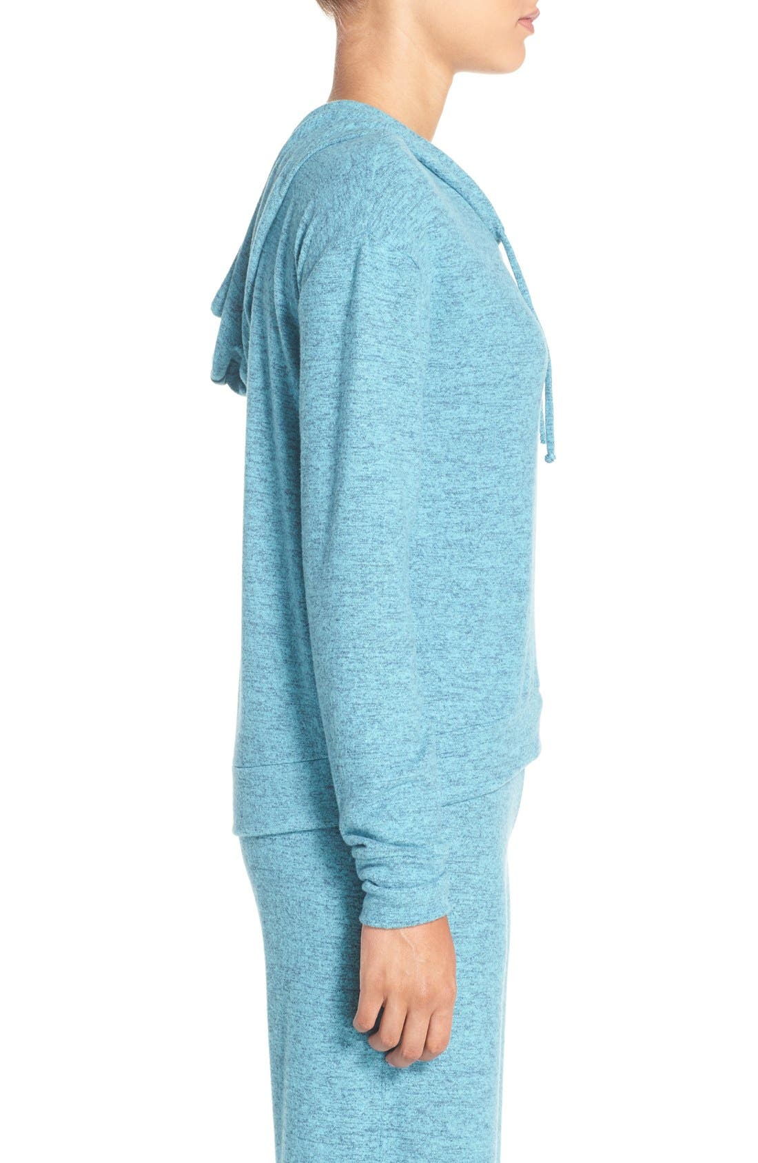Pullover Hoodie,                             Alternate thumbnail 51, color,