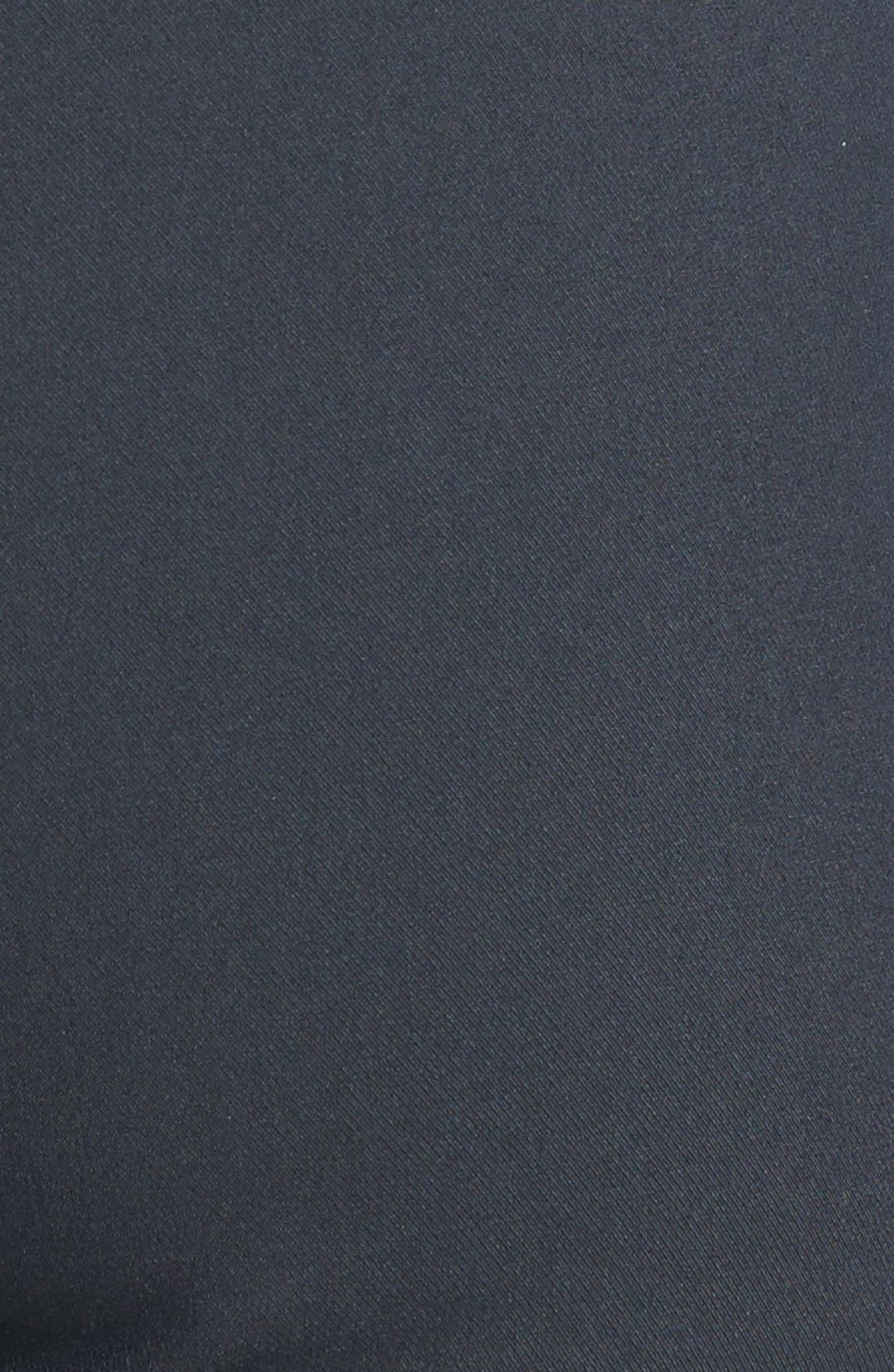 'Callie' Seamed Crop Pants,                             Alternate thumbnail 2, color,                             411
