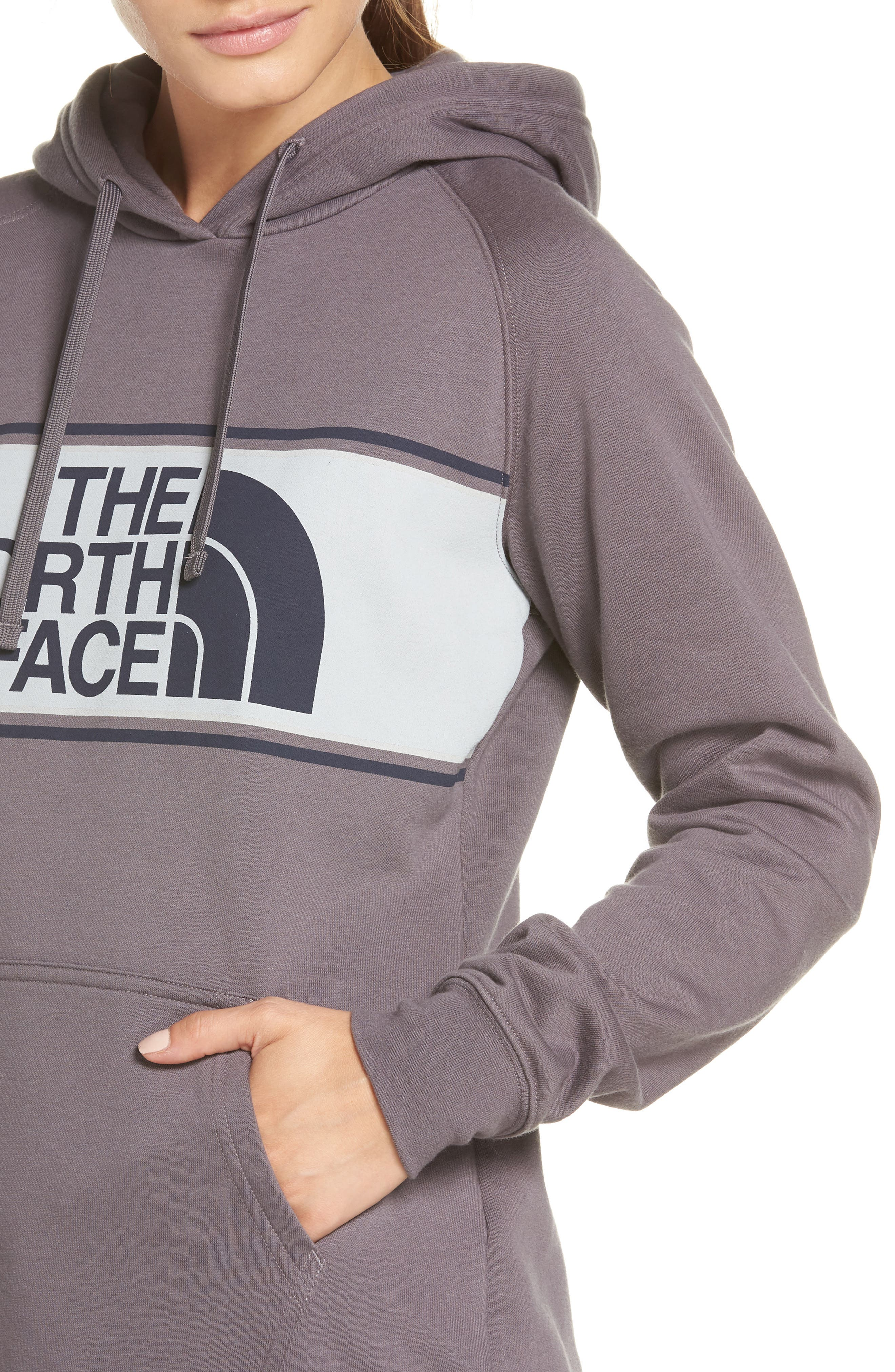 THE NORTH FACE,                             Edge to Edge Logo Hoodie Sweatshirt,                             Alternate thumbnail 4, color,                             023