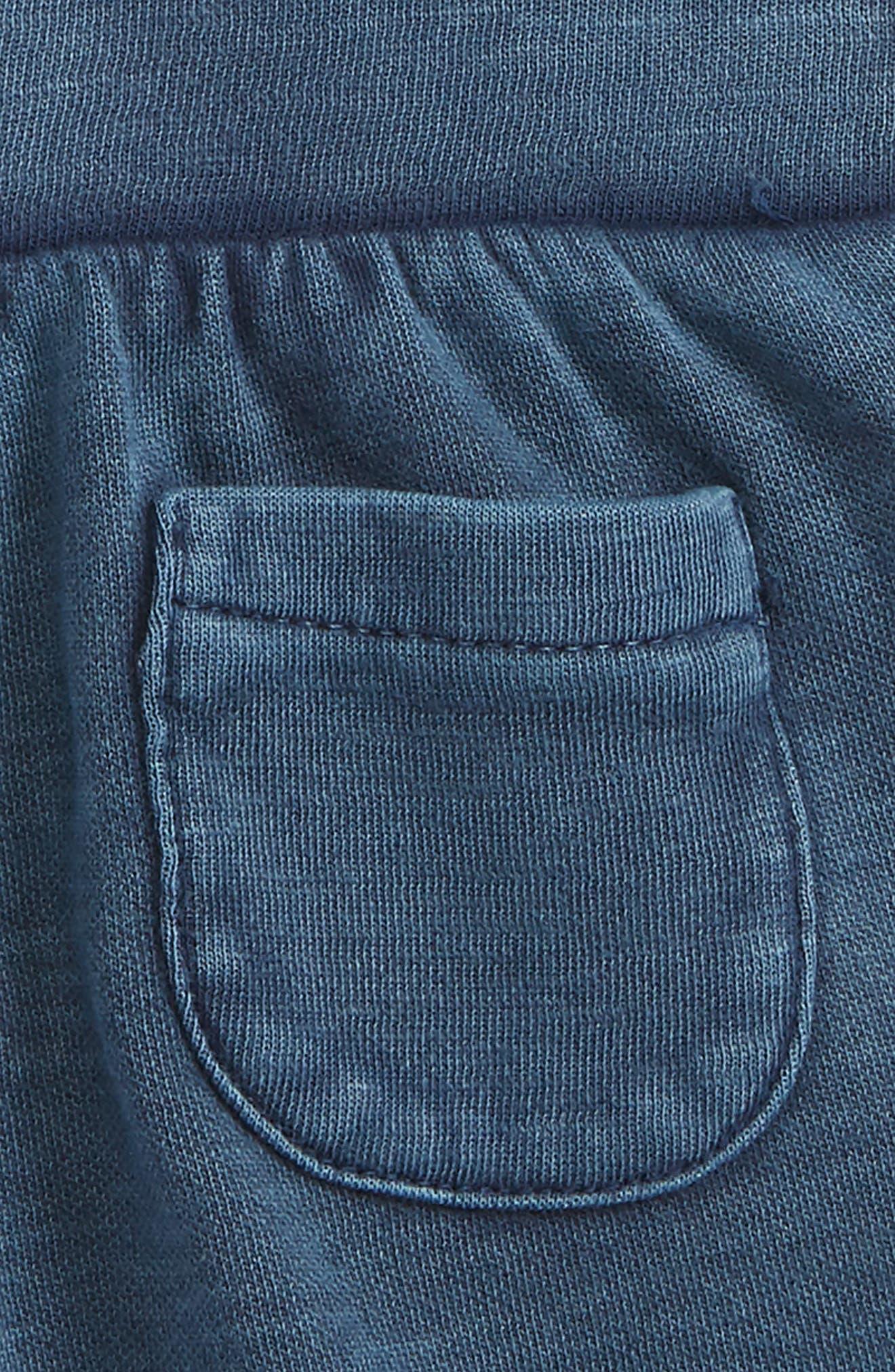 Knit Shorts,                             Alternate thumbnail 3, color,                             410