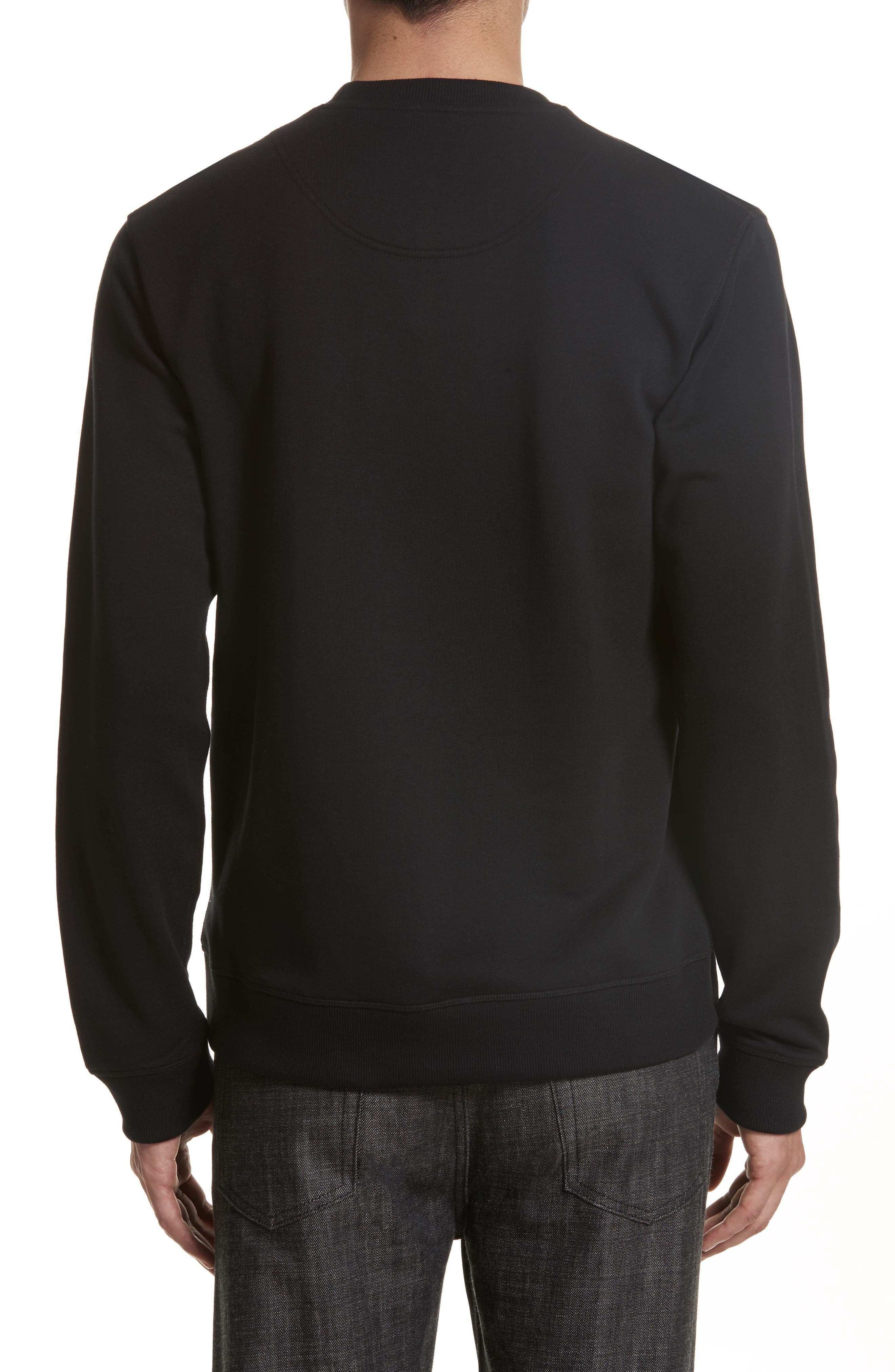 Embroidered Graphic Sweatshirt,                             Alternate thumbnail 2, color,                             001