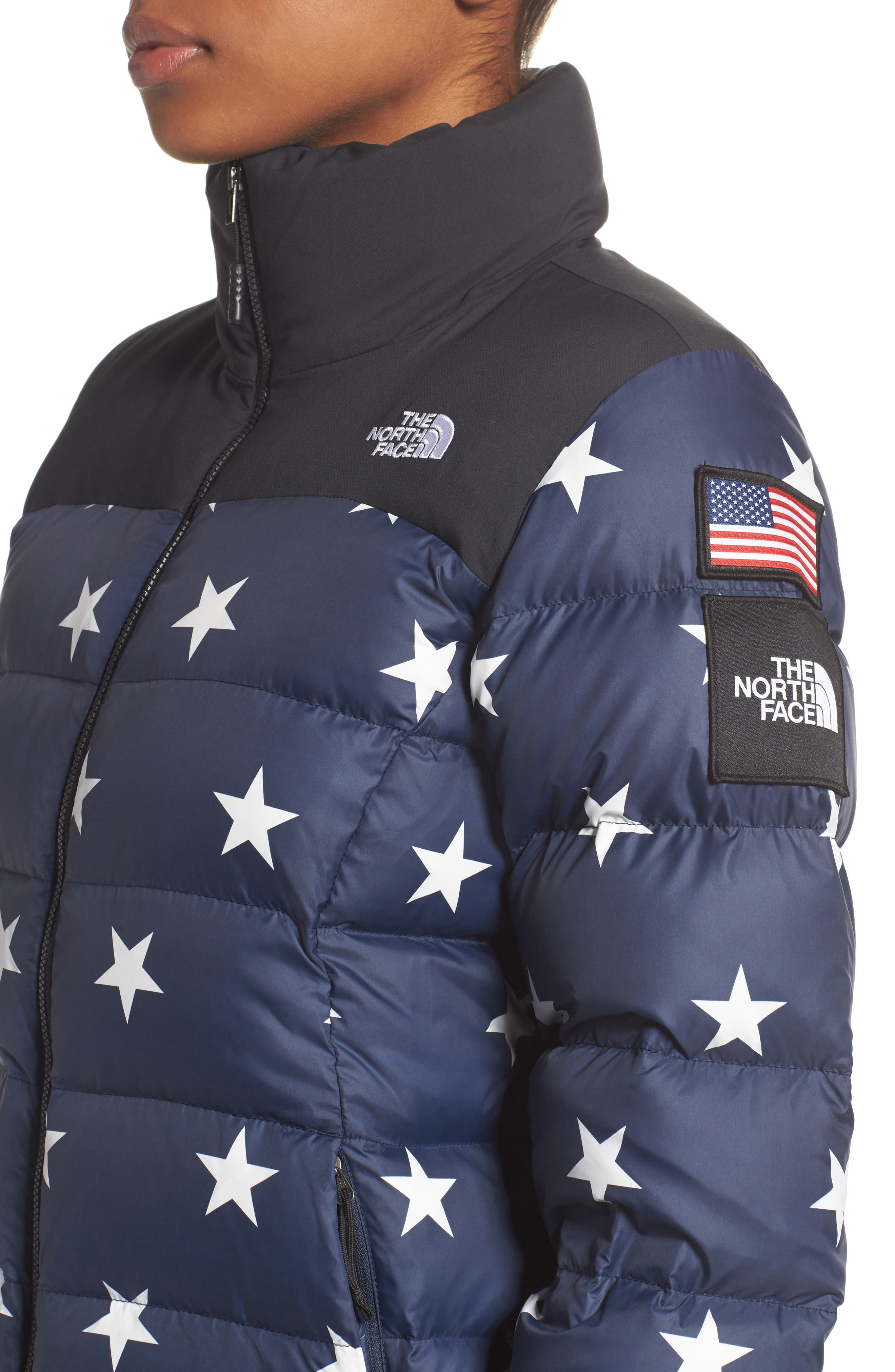 International Collection Nuptse 700-Fill Power Down Puffer Jacket,                             Alternate thumbnail 8, color,