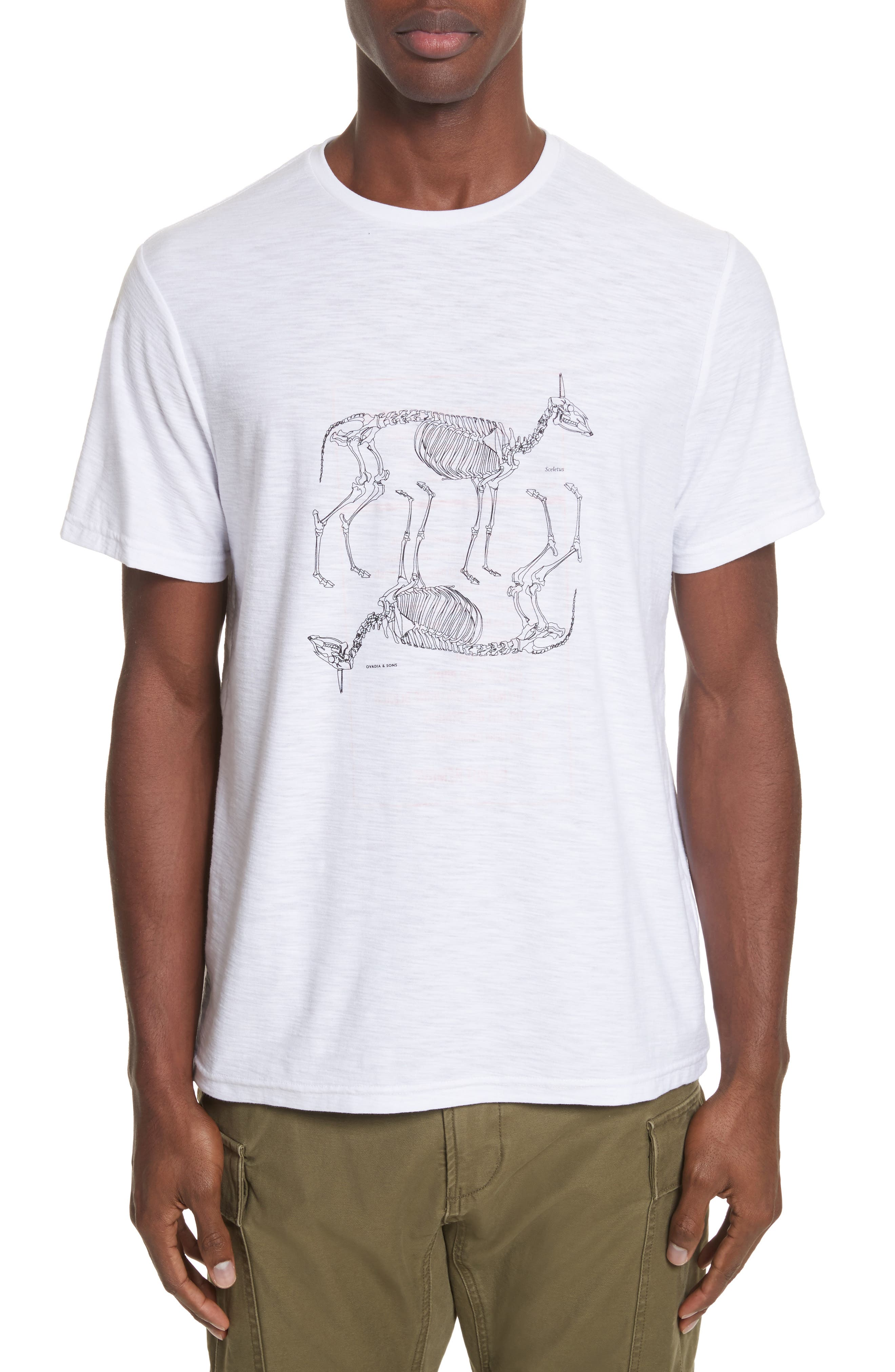 Animal Skeleton Graphic T-Shirt,                         Main,                         color, 106