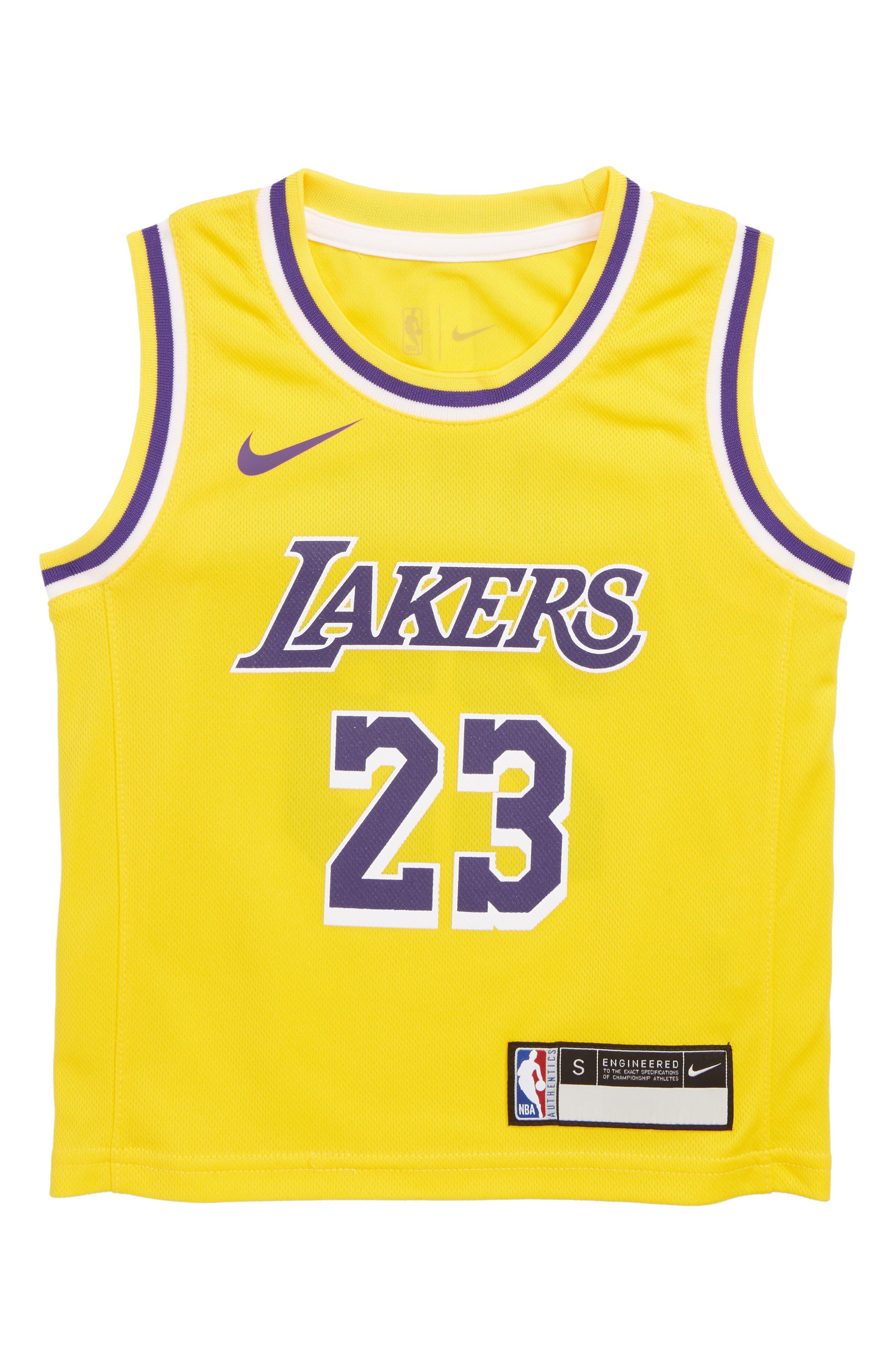 Boys Nba Logo Los Angeles Lakers Lebron James Basketball Jersey Size M (56)  Metallic