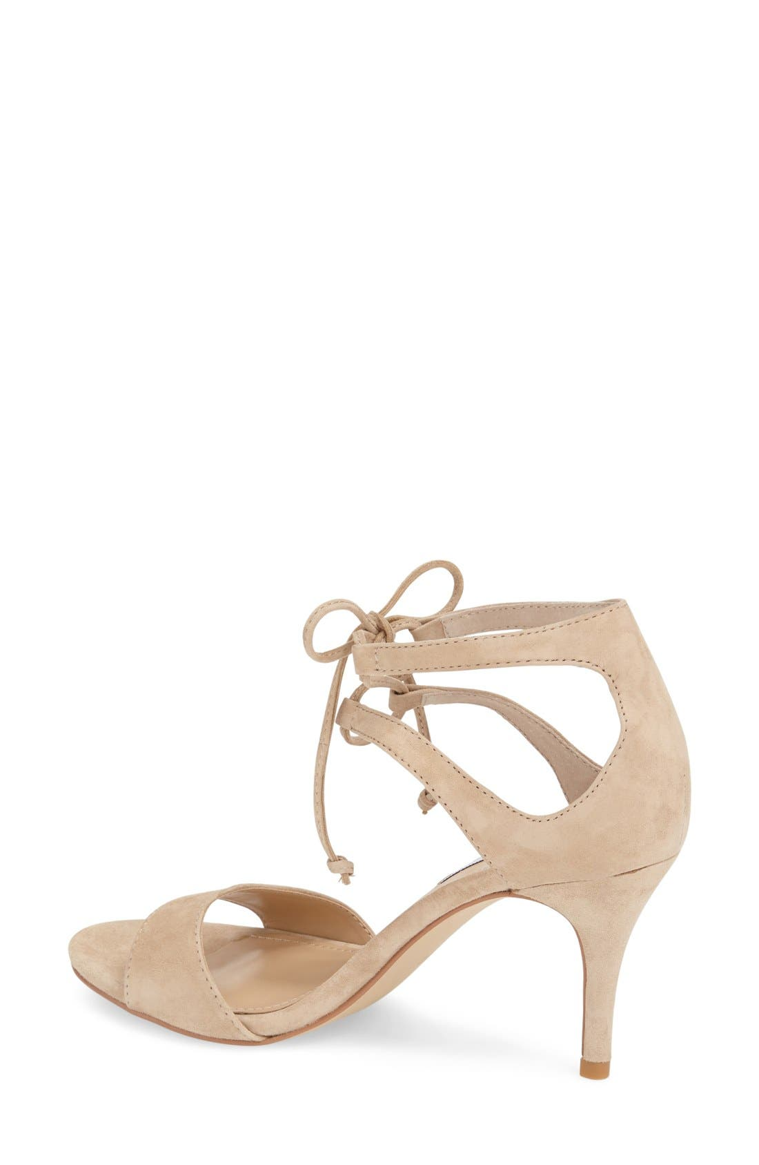 'Salsaa' Lace-Up Ankle Strap Sandal,                             Alternate thumbnail 6, color,