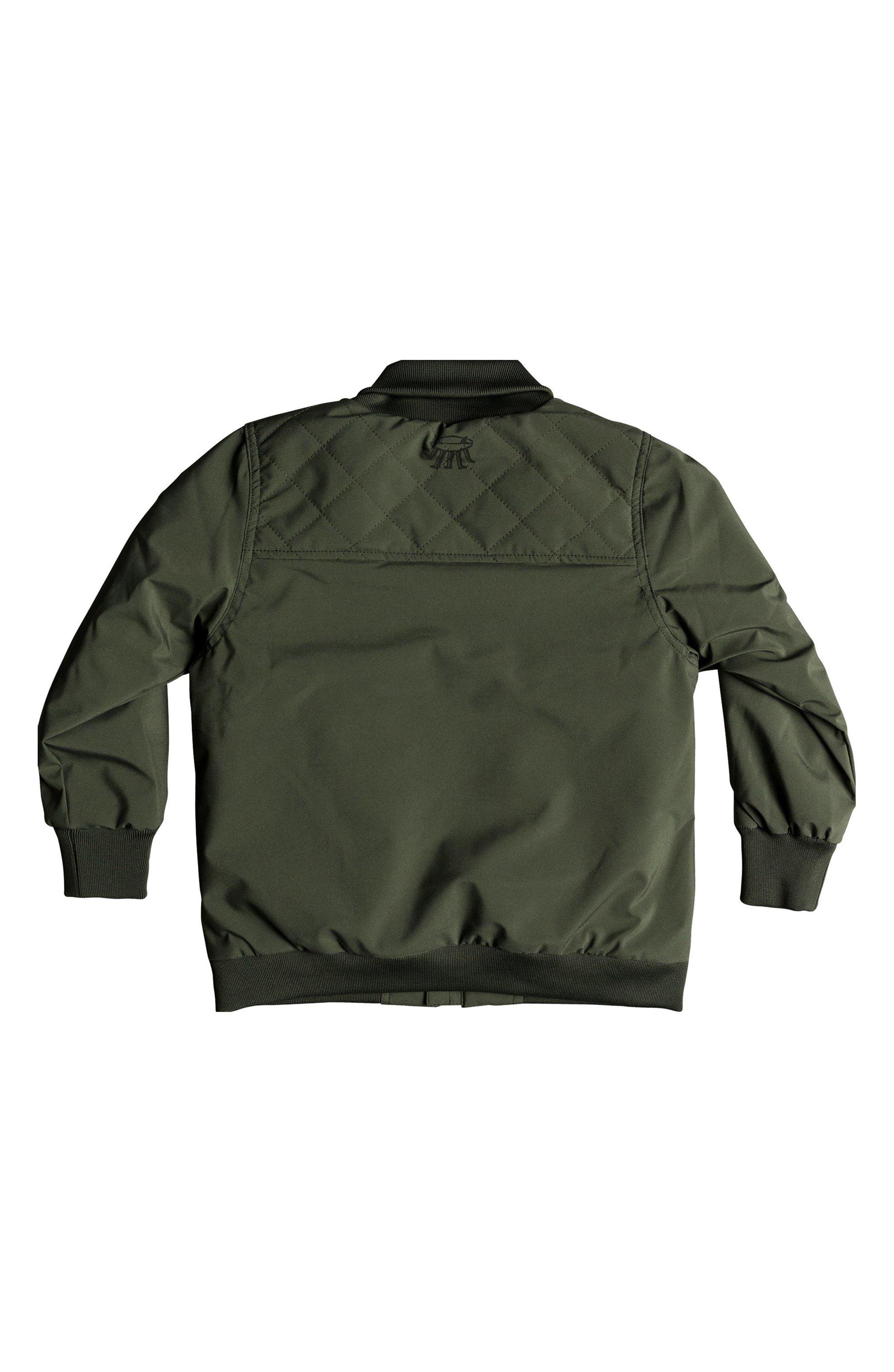 Mankai Sun Bomber Jacket,                             Alternate thumbnail 2, color,                             THYME
