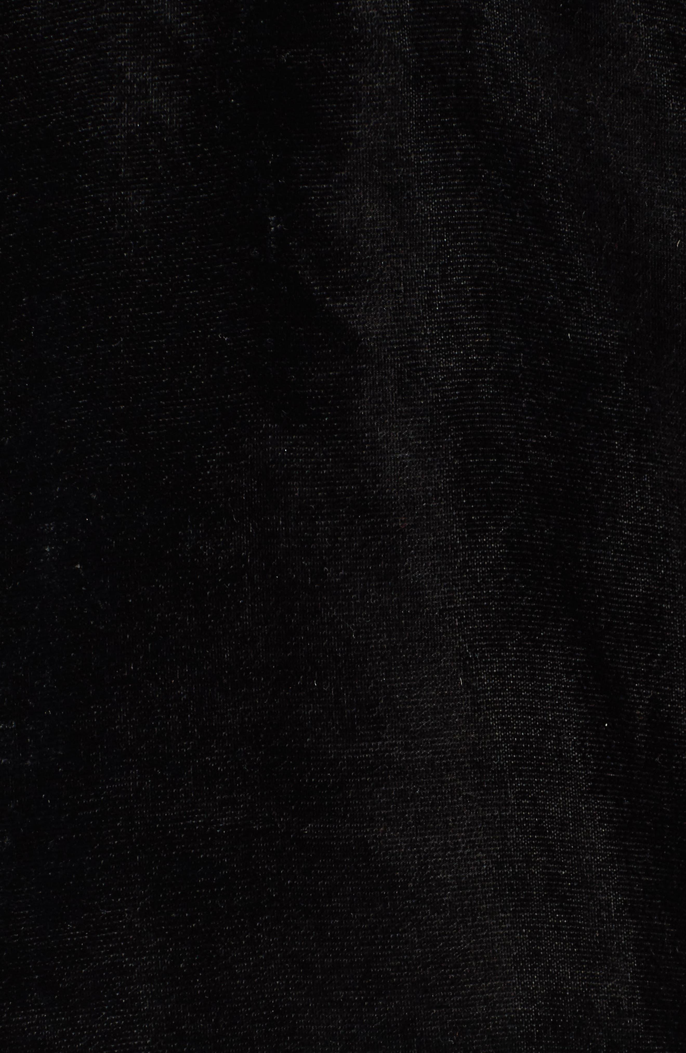 Embroidered Velvet Jacket,                             Alternate thumbnail 6, color,