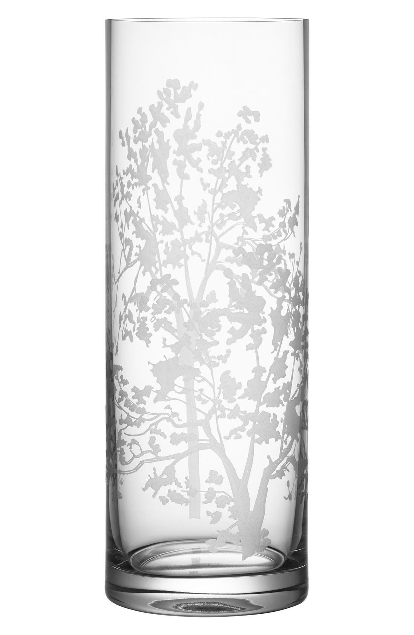 Organic Cylinder Vase,                             Main thumbnail 1, color,                             CLEAR