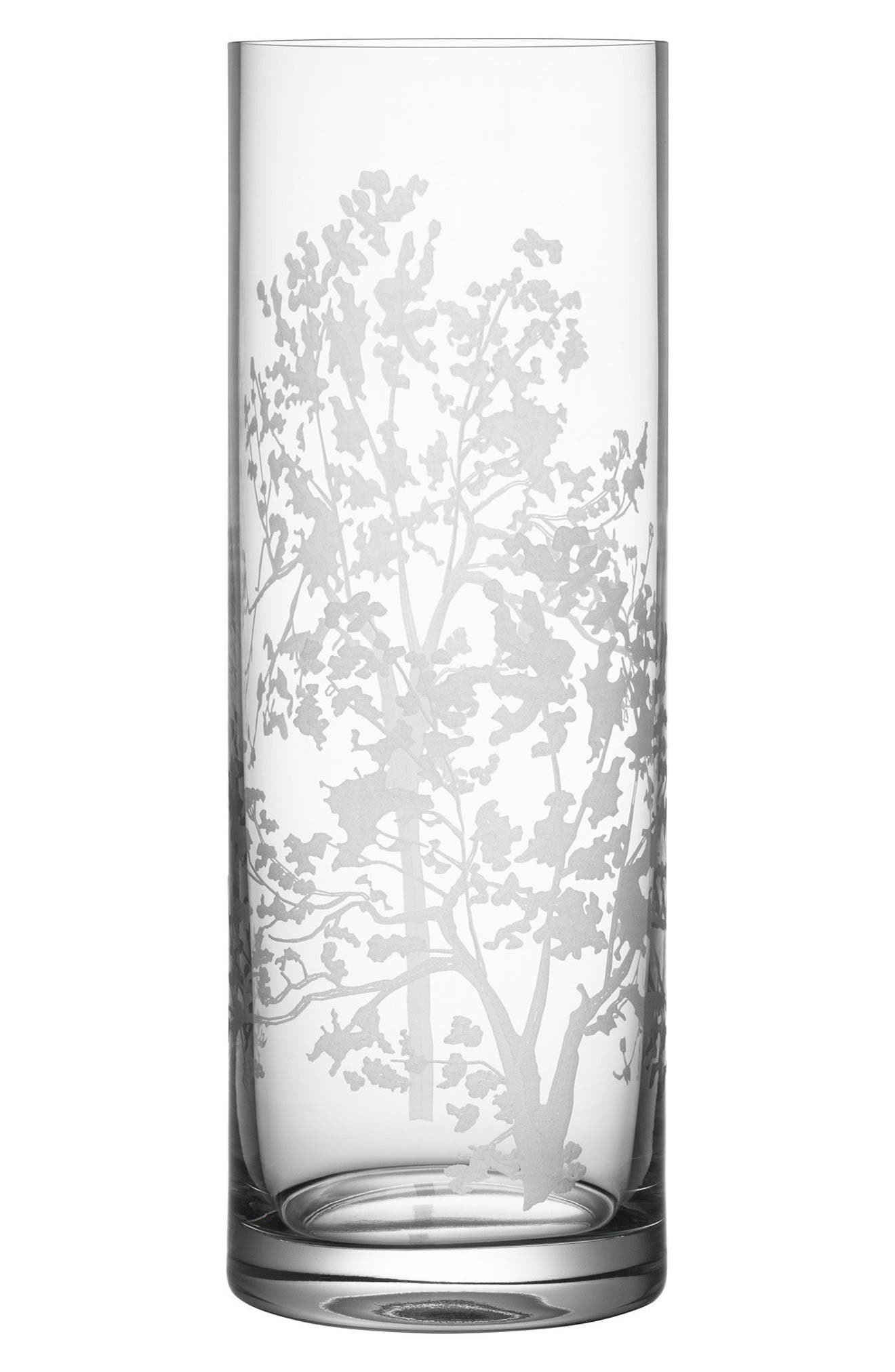 Organic Cylinder Vase,                         Main,                         color, CLEAR