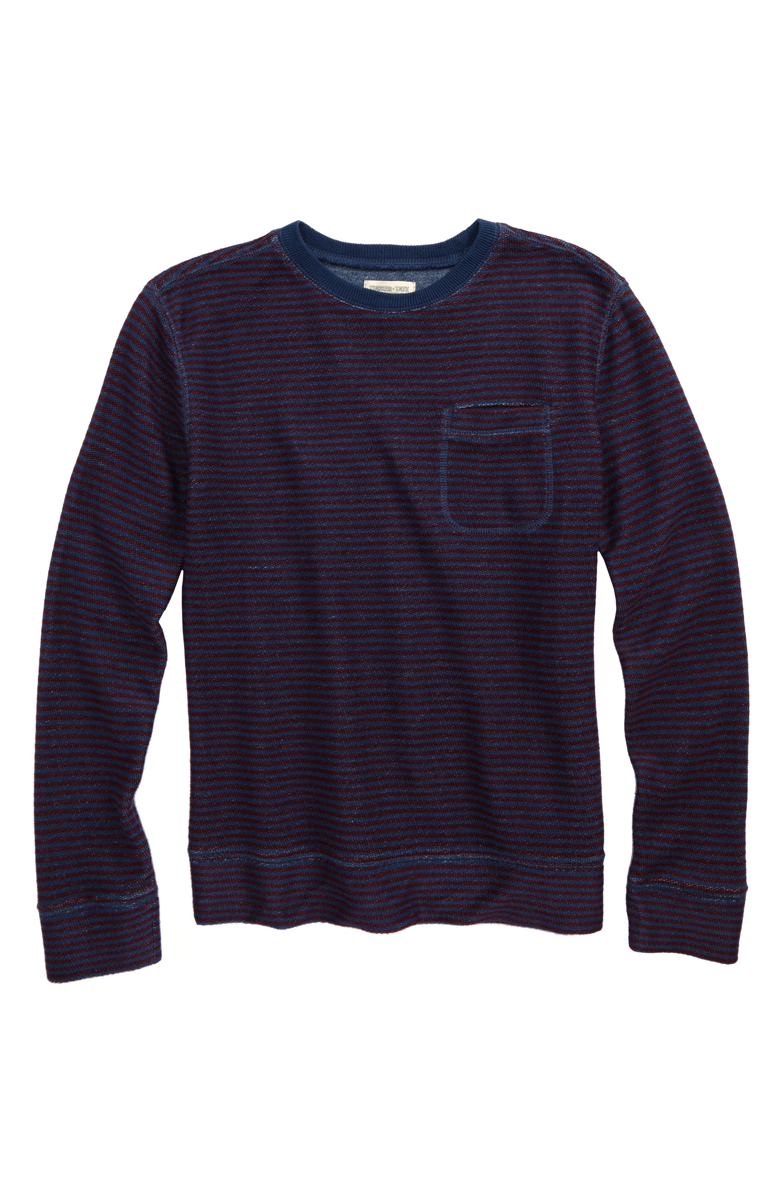 Stripe Crewneck Sweatshirt,                             Main thumbnail 1, color,                             410