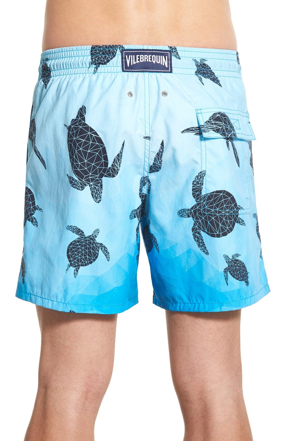 'Moorea - 3D Turtles' Swim Trunks,                             Alternate thumbnail 2, color,                             401