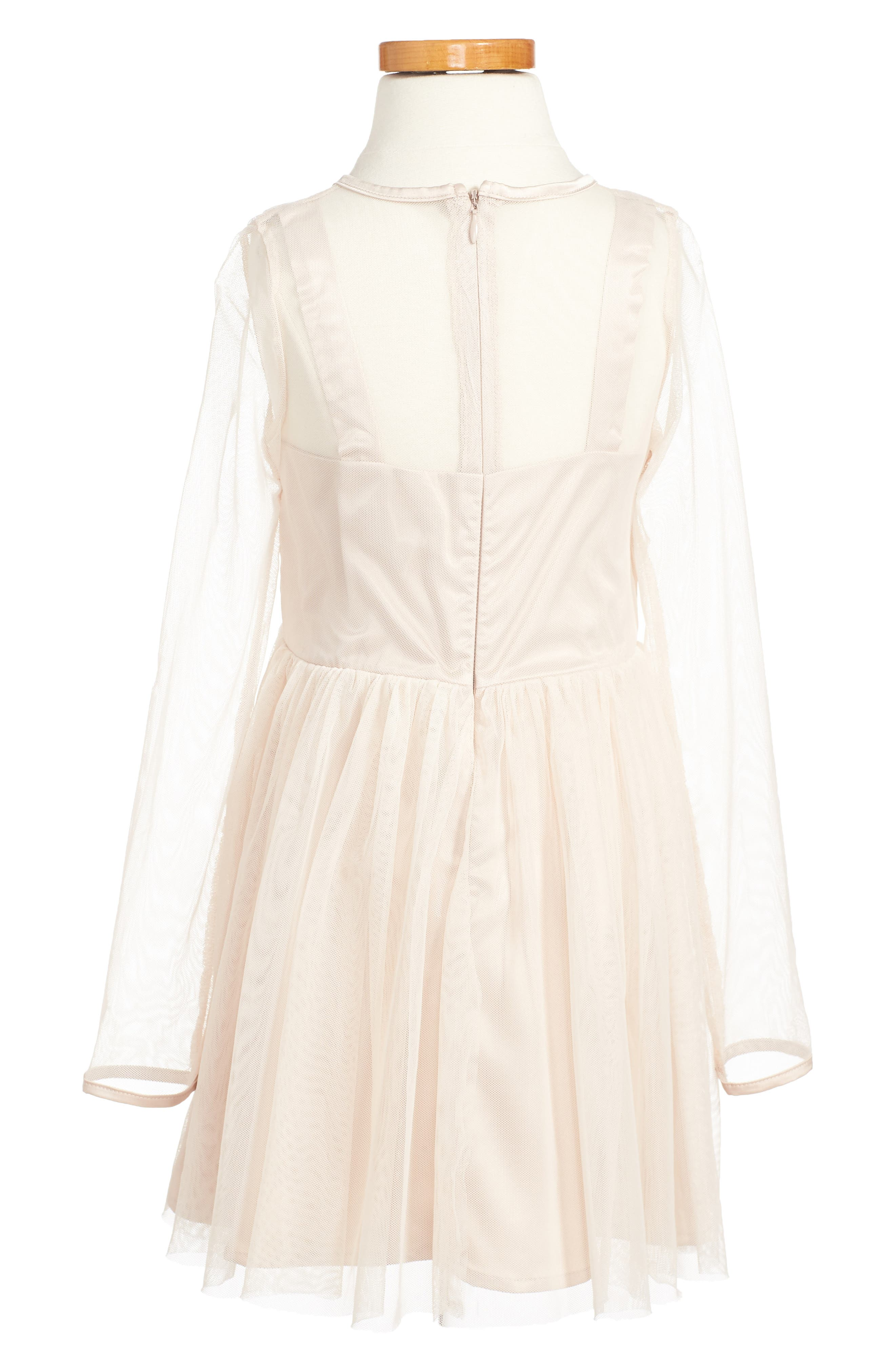 Annabelle Embroidered Mesh Dress,                             Alternate thumbnail 2, color,                             650
