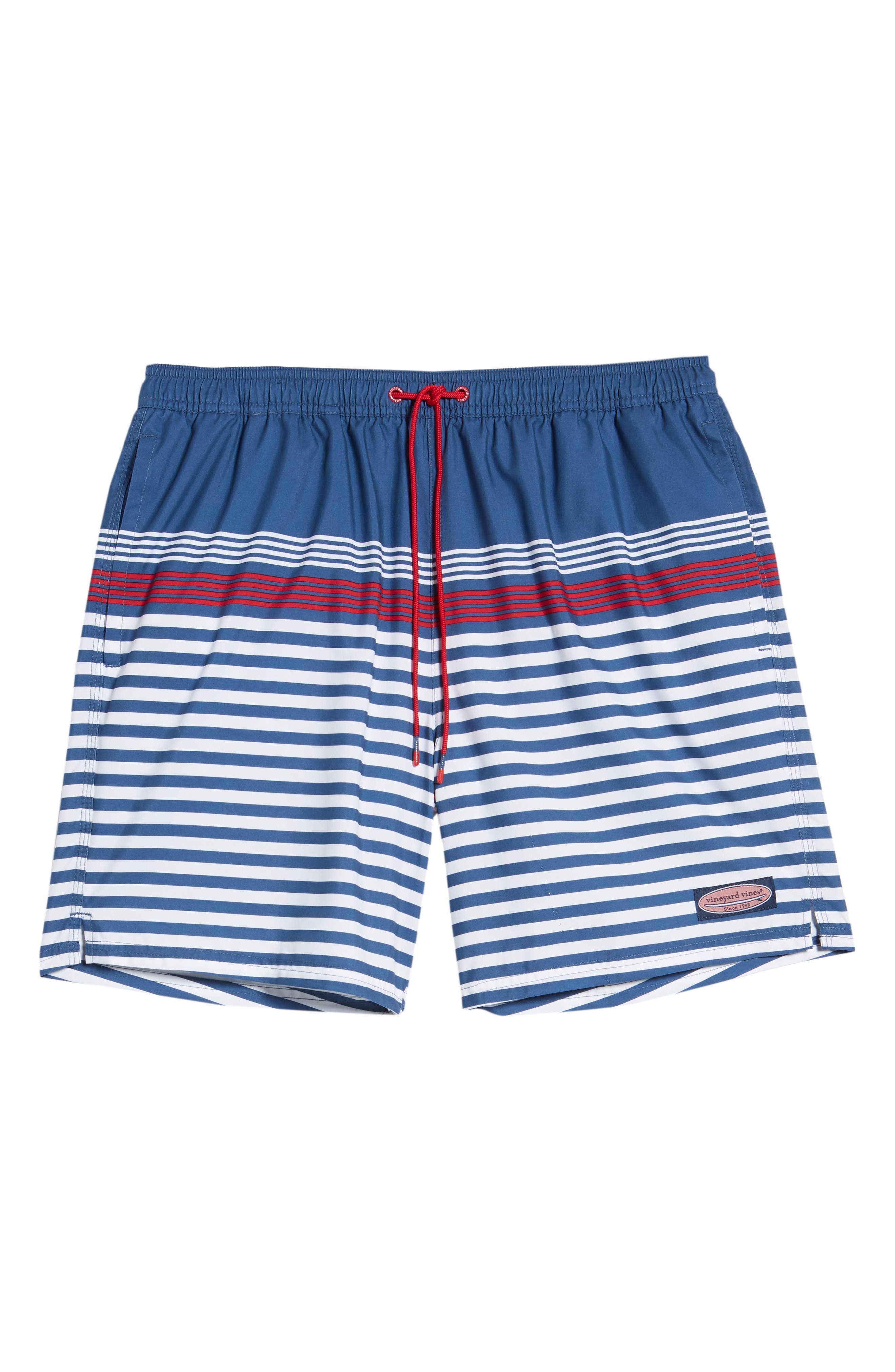 Chappy Summerall Stripe Swim Trunks,                             Alternate thumbnail 6, color,                             MOONSHINE