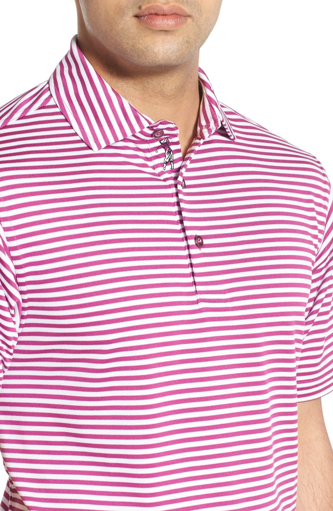 XH2O Feed Stripe Stretch Golf Polo,                             Alternate thumbnail 72, color,