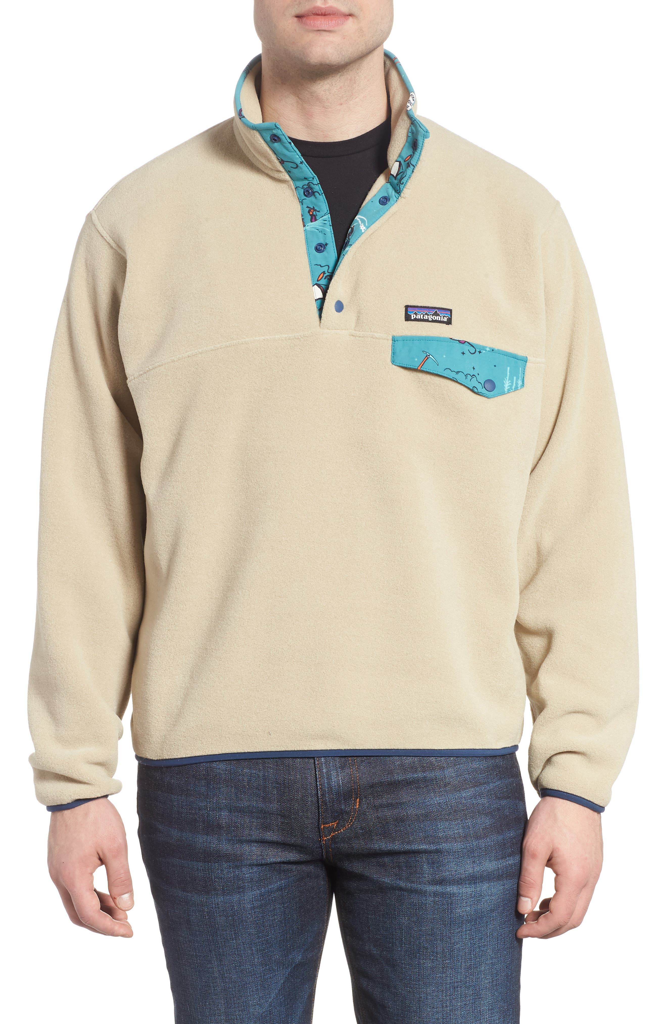 Synchilla<sup>®</sup> Snap-T<sup>®</sup> Fleece Pullover,                         Main,                         color, 255