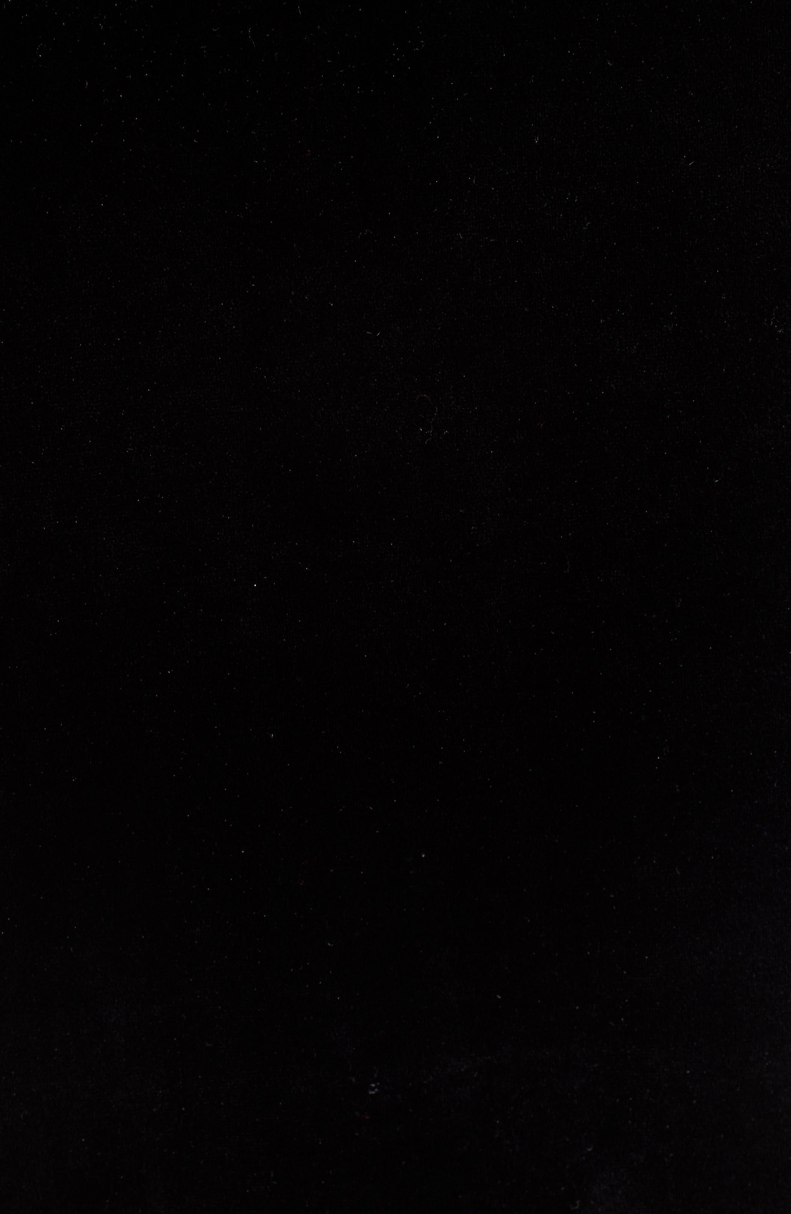 Karl Lagerfeld Lace Panel Velvet Tee,                             Alternate thumbnail 5, color,                             BLACK