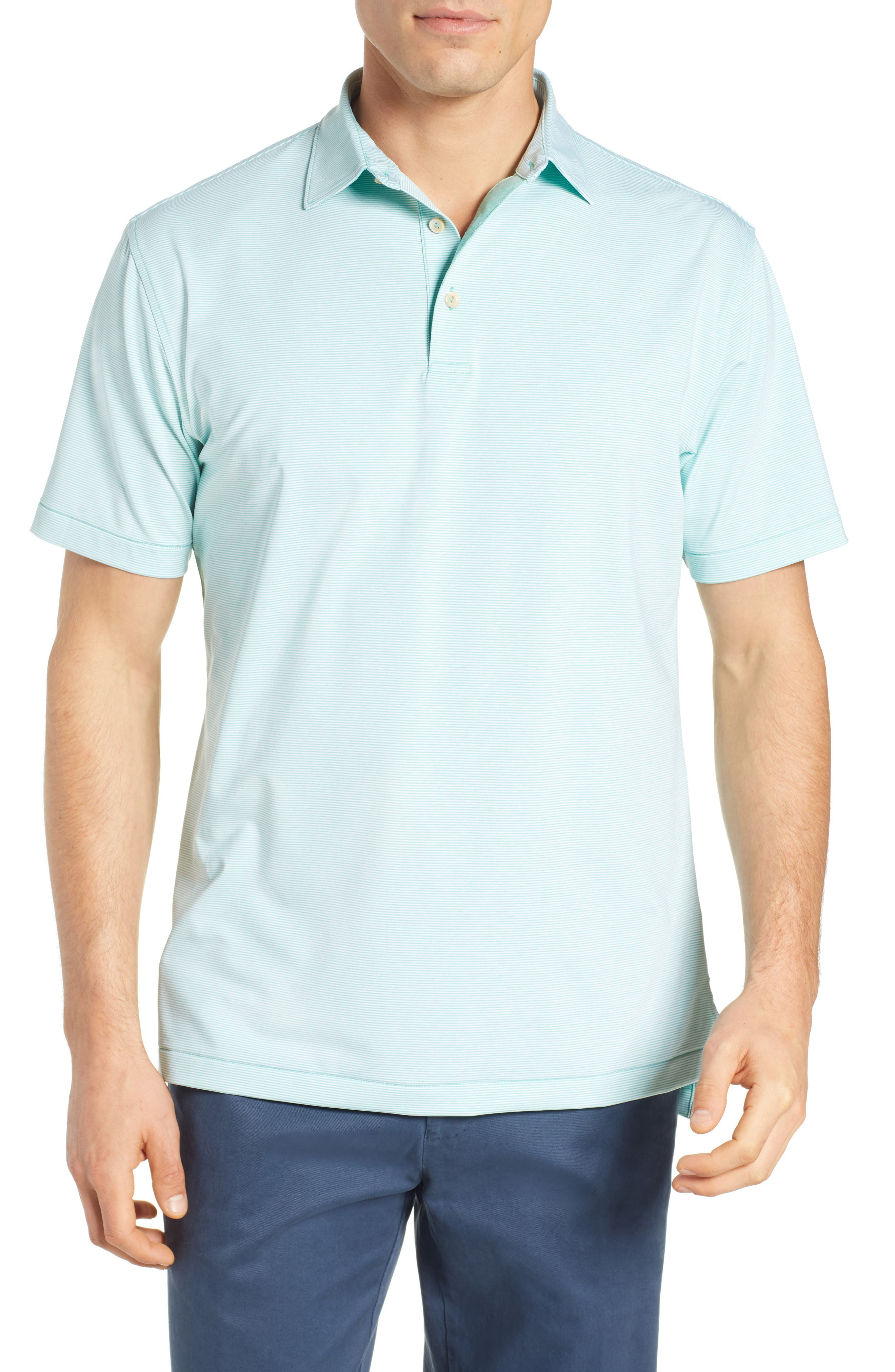 Jubilee Stripe Jersey Polo,                             Main thumbnail 1, color,                             MEADOW