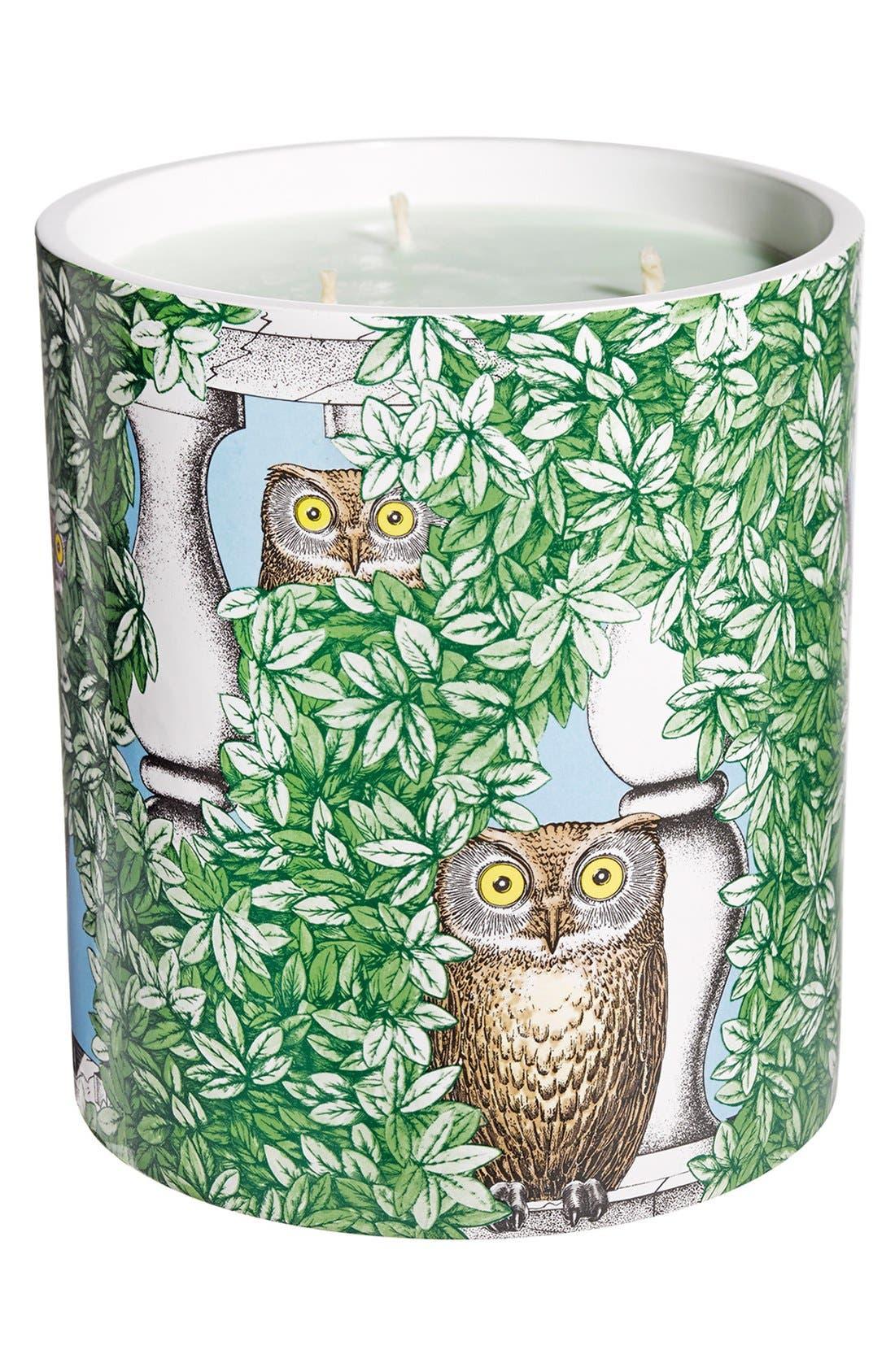 'Giardino Segreto - Segretto' Large Candle,                         Main,                         color, NO COLOR