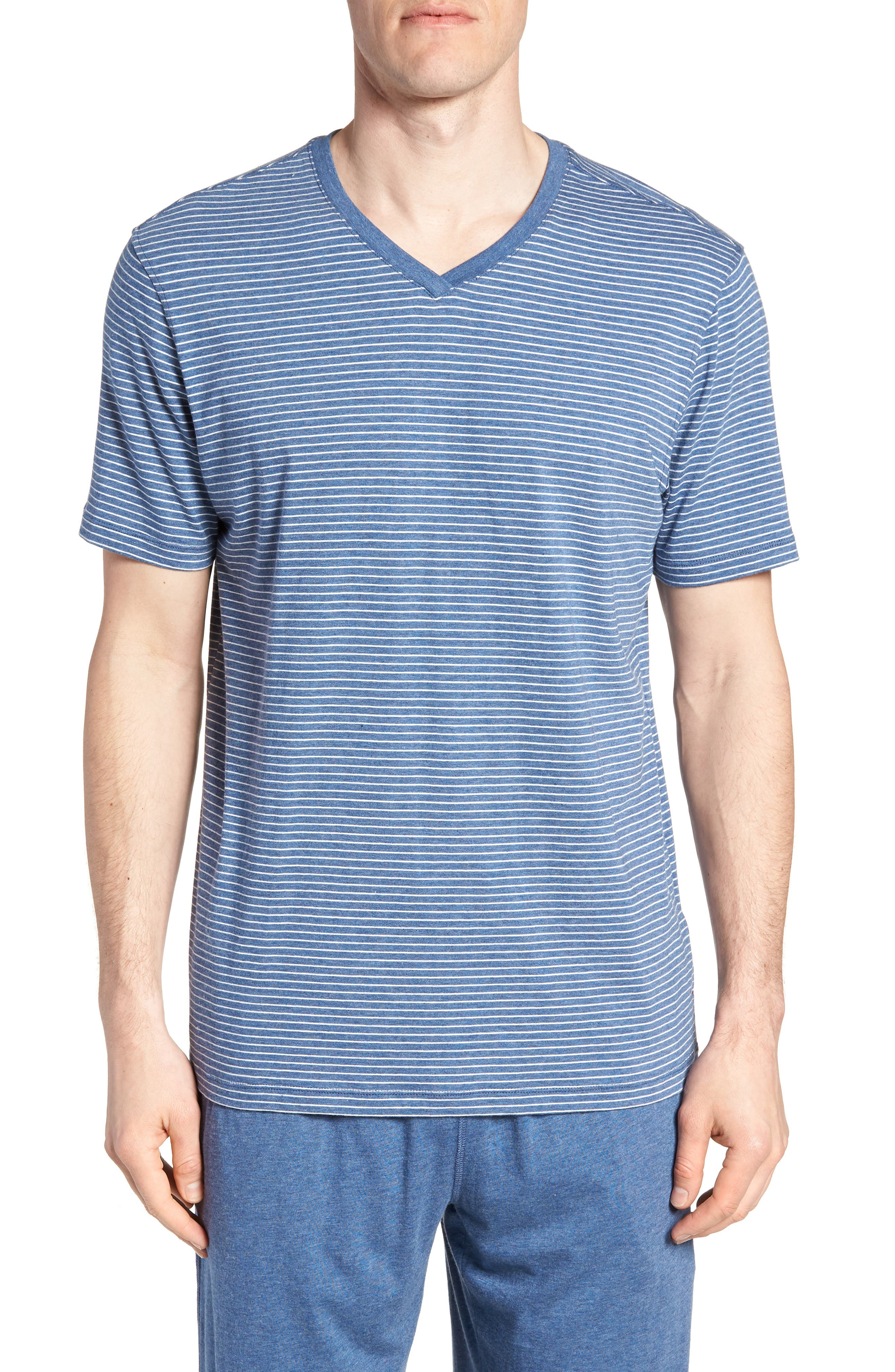 Stripe Pima Cotton & Modal V-Neck T-Shirt,                         Main,                         color, 479