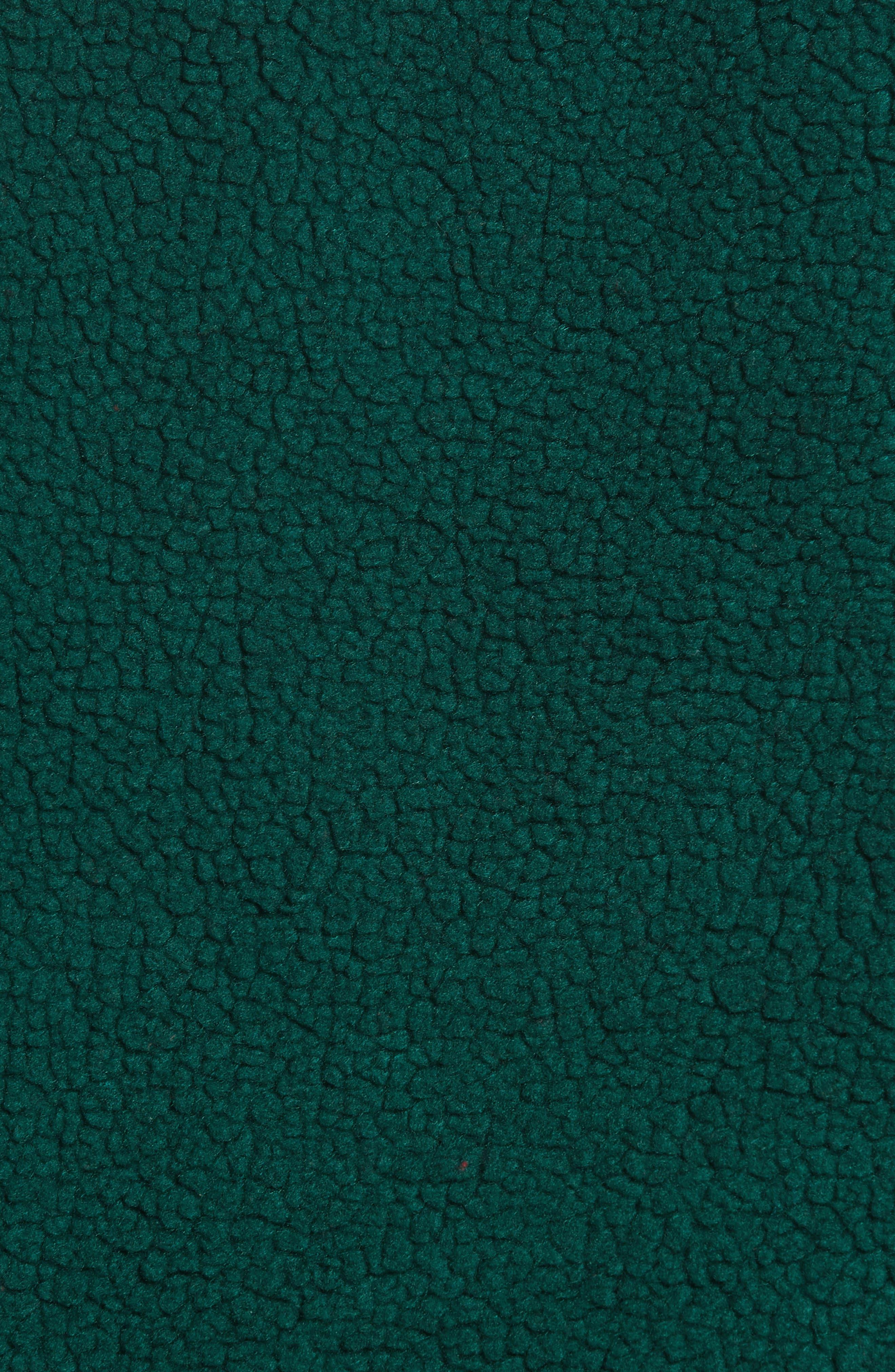 Denali Jacket,                             Alternate thumbnail 6, color,                             301