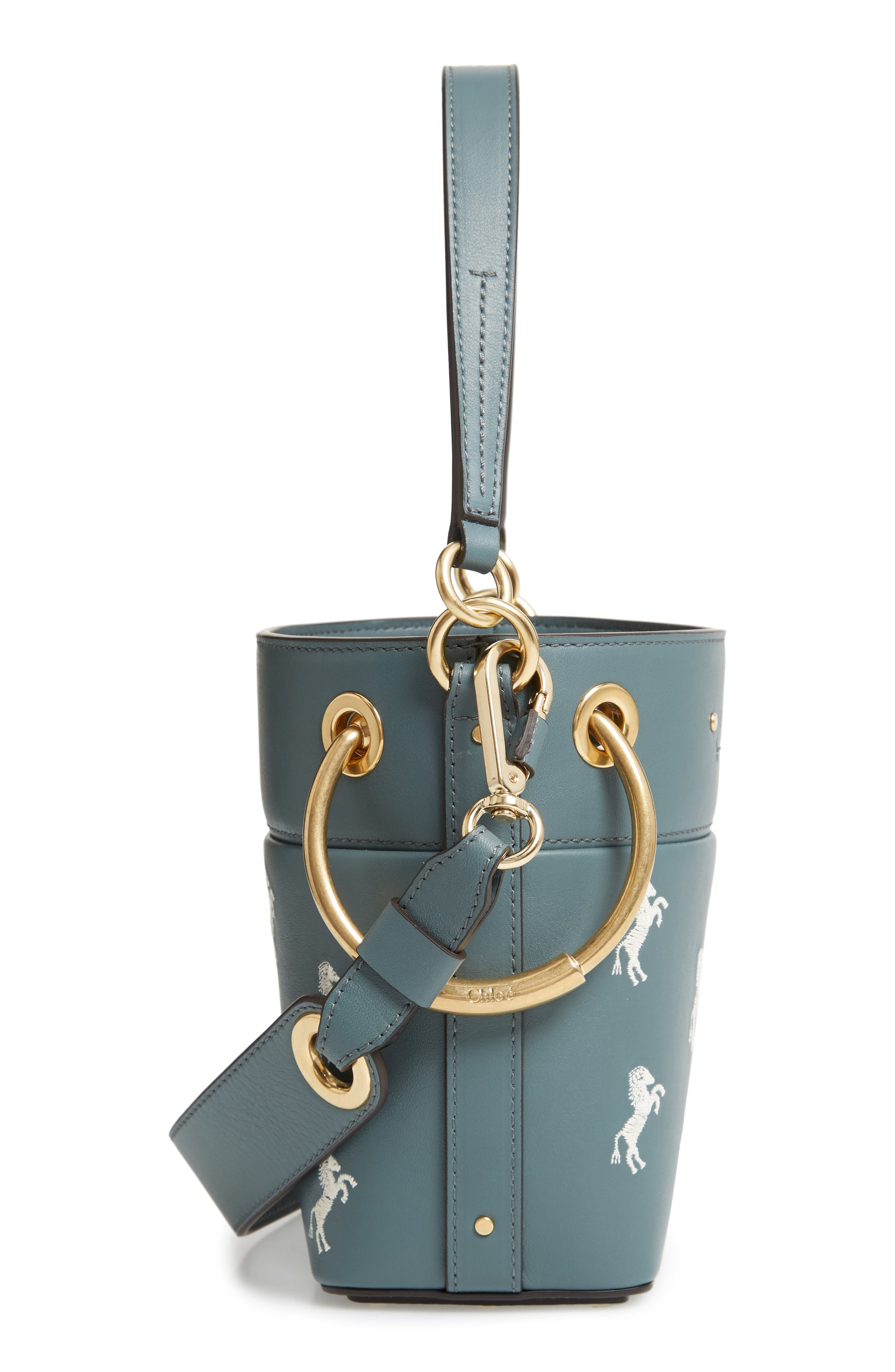 Roy Mini Embroidered Leather Bucket Bag,                             Alternate thumbnail 5, color,                             CLOUDY BLUE