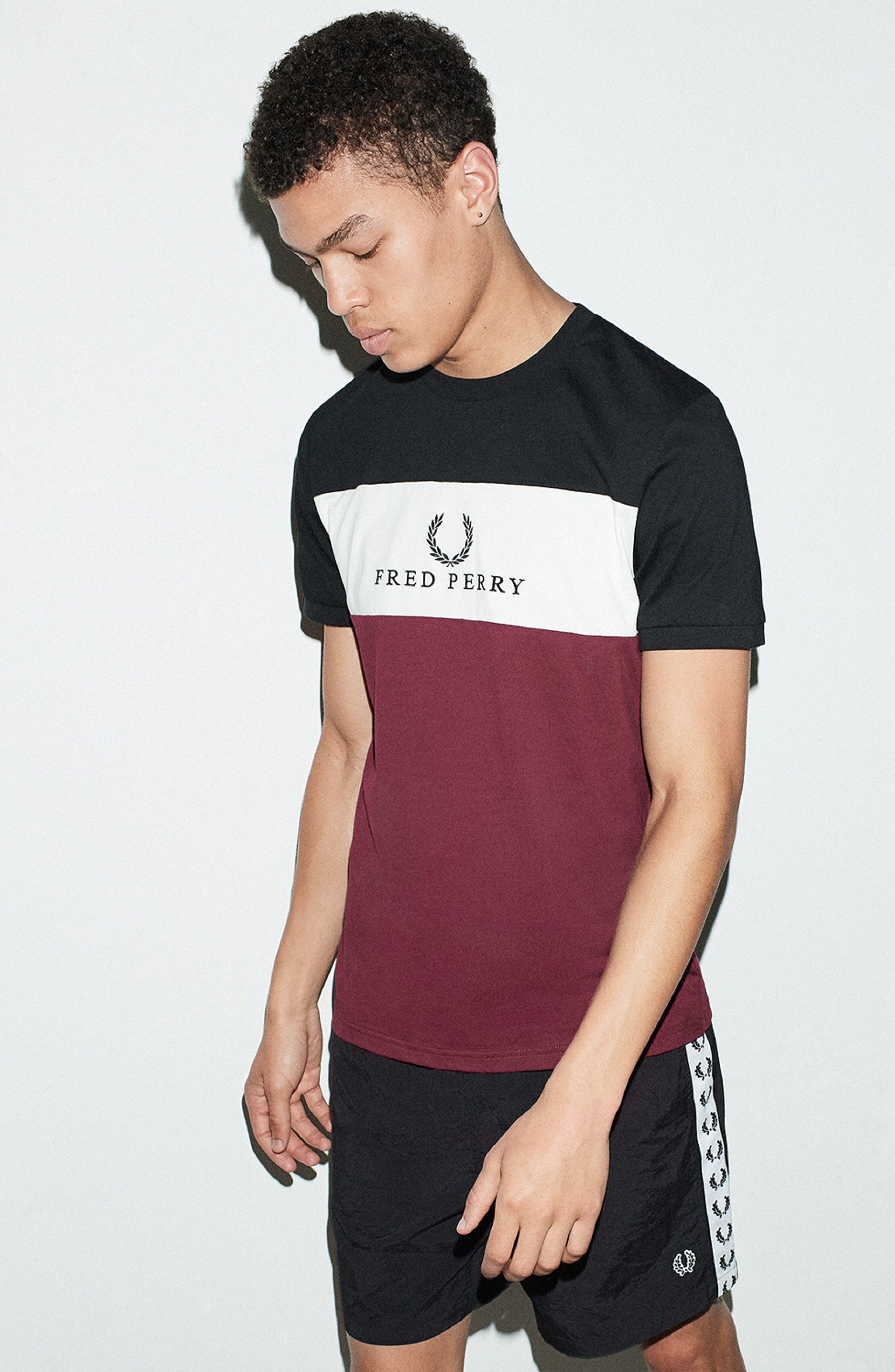 Embroidered Colorblock T-Shirt,                             Alternate thumbnail 7, color,                             TAWNY PORT