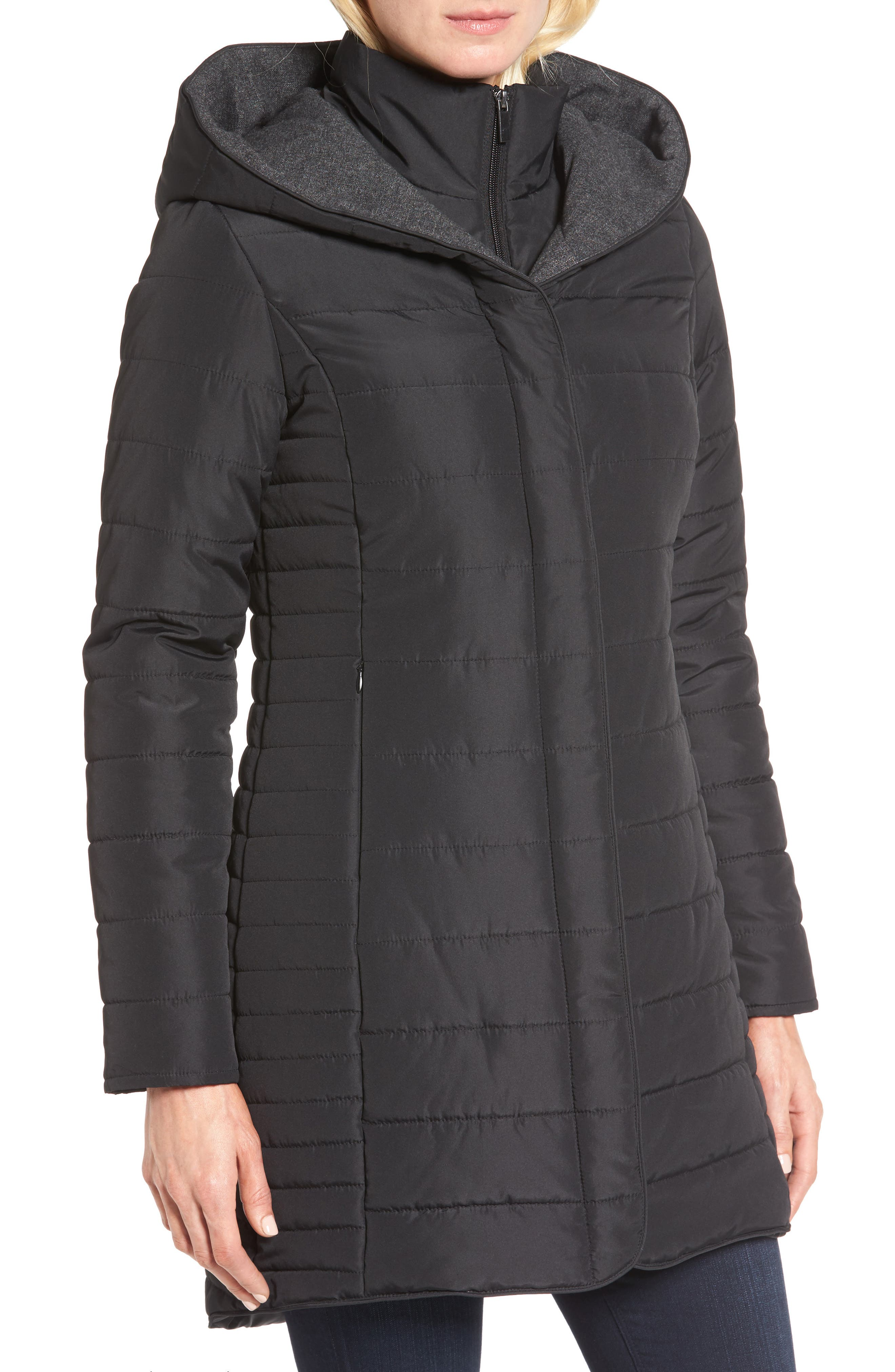 Quilted Hooded Jacket,                             Alternate thumbnail 4, color,