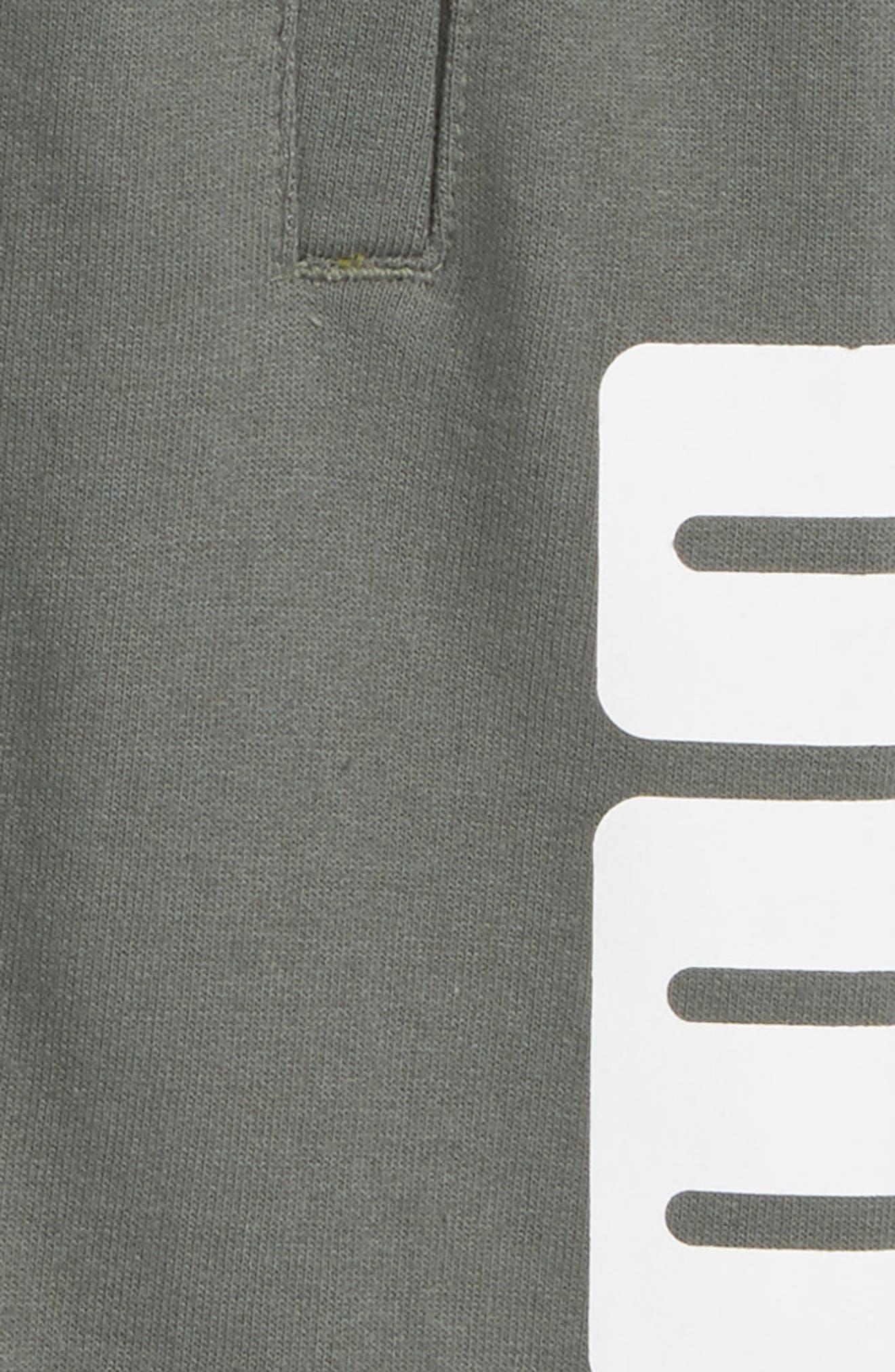 Rebel Knit Shorts,                             Alternate thumbnail 4, color,