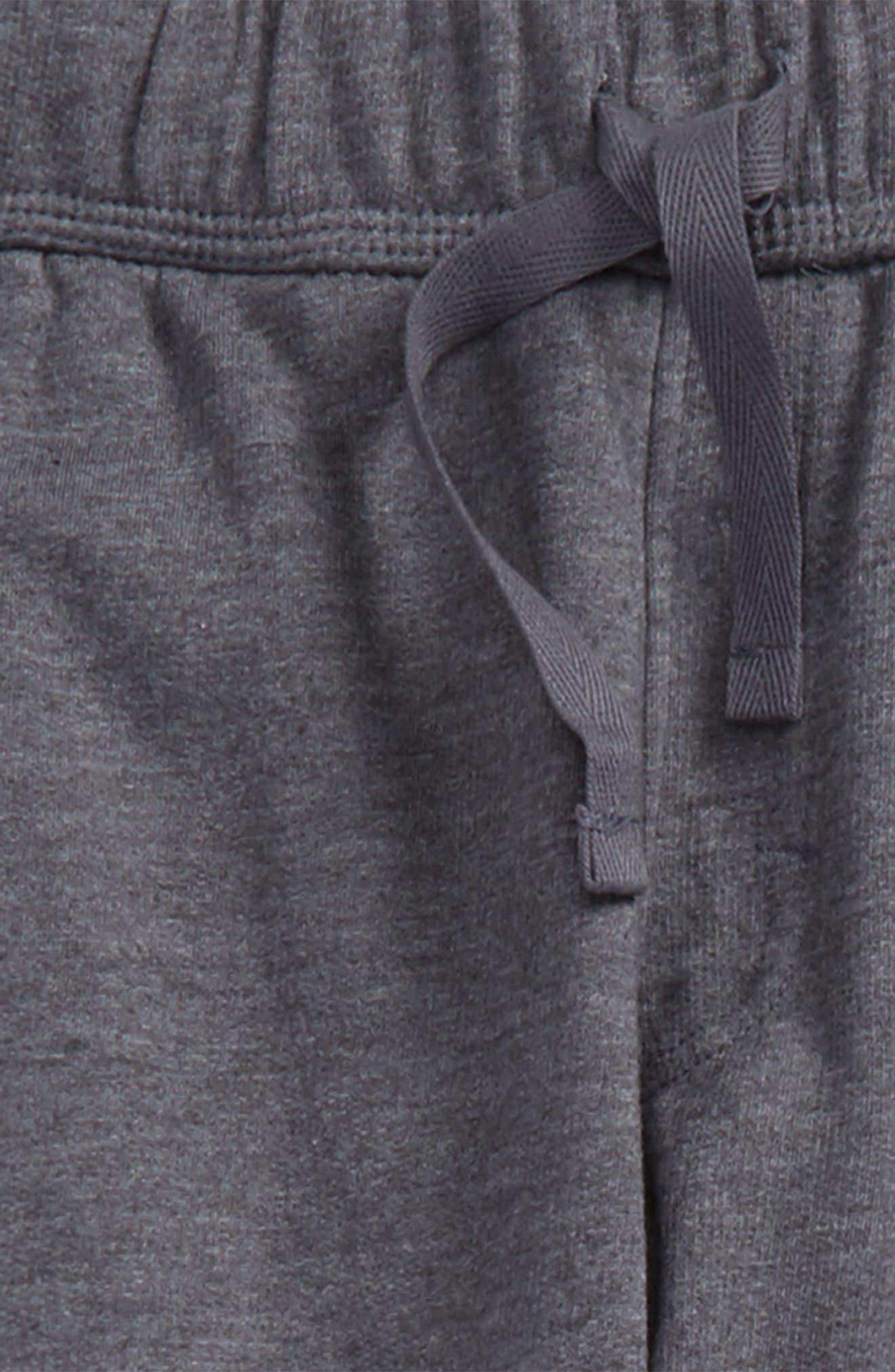 Knit Jogger Pants,                             Alternate thumbnail 2, color,                             030