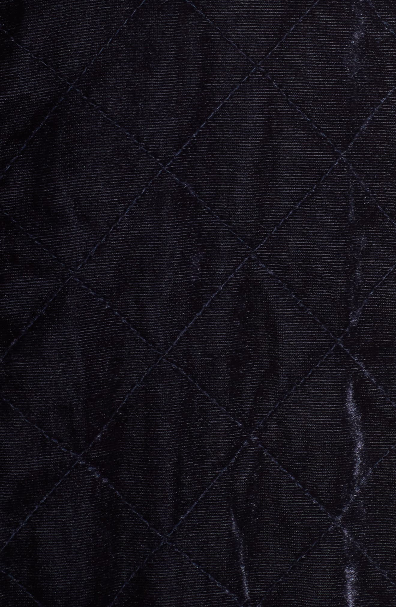 Quilted Velvet Jacket,                             Alternate thumbnail 6, color,                             400