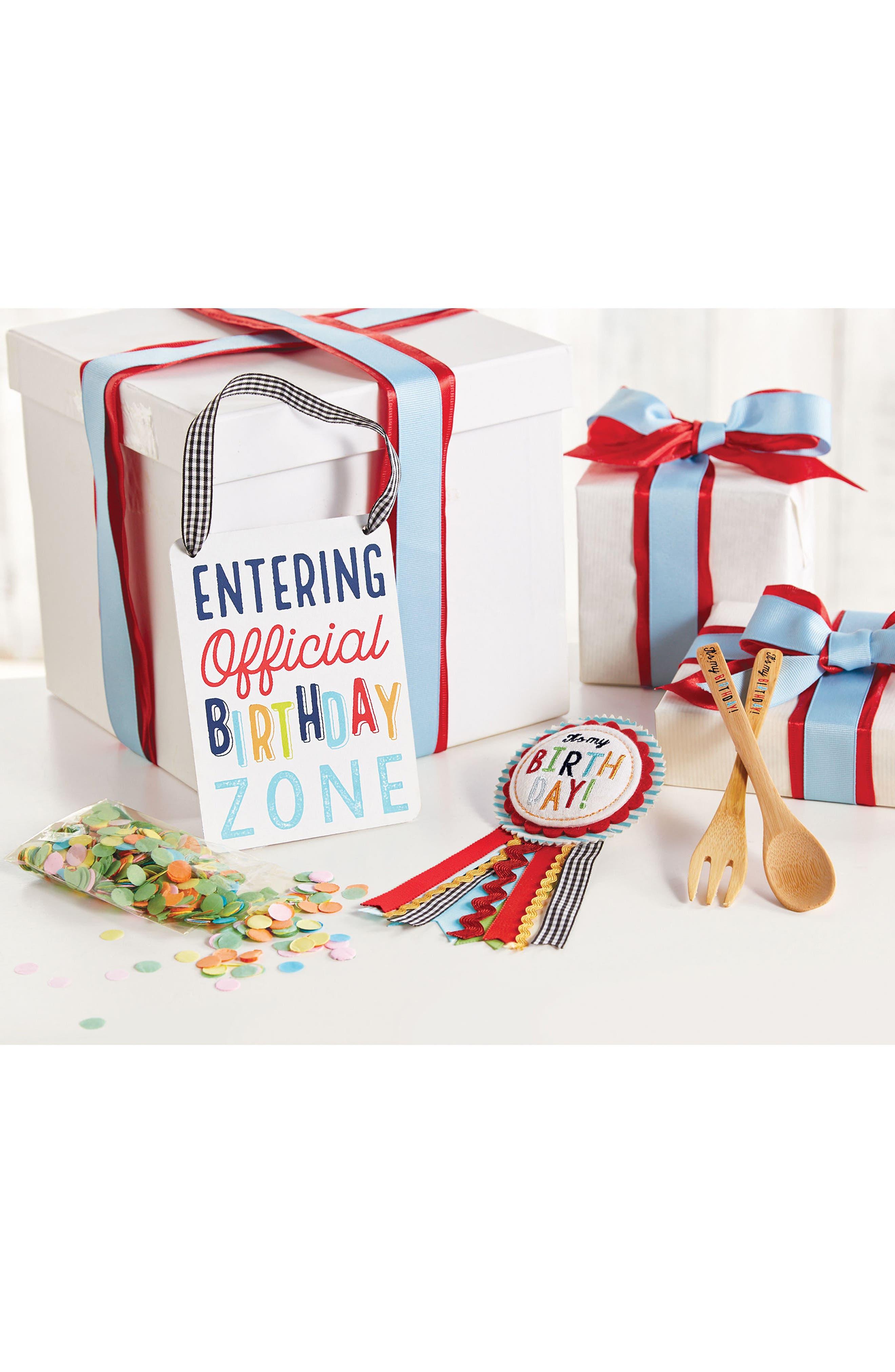 Birthday Surprise Kit,                             Alternate thumbnail 2, color,