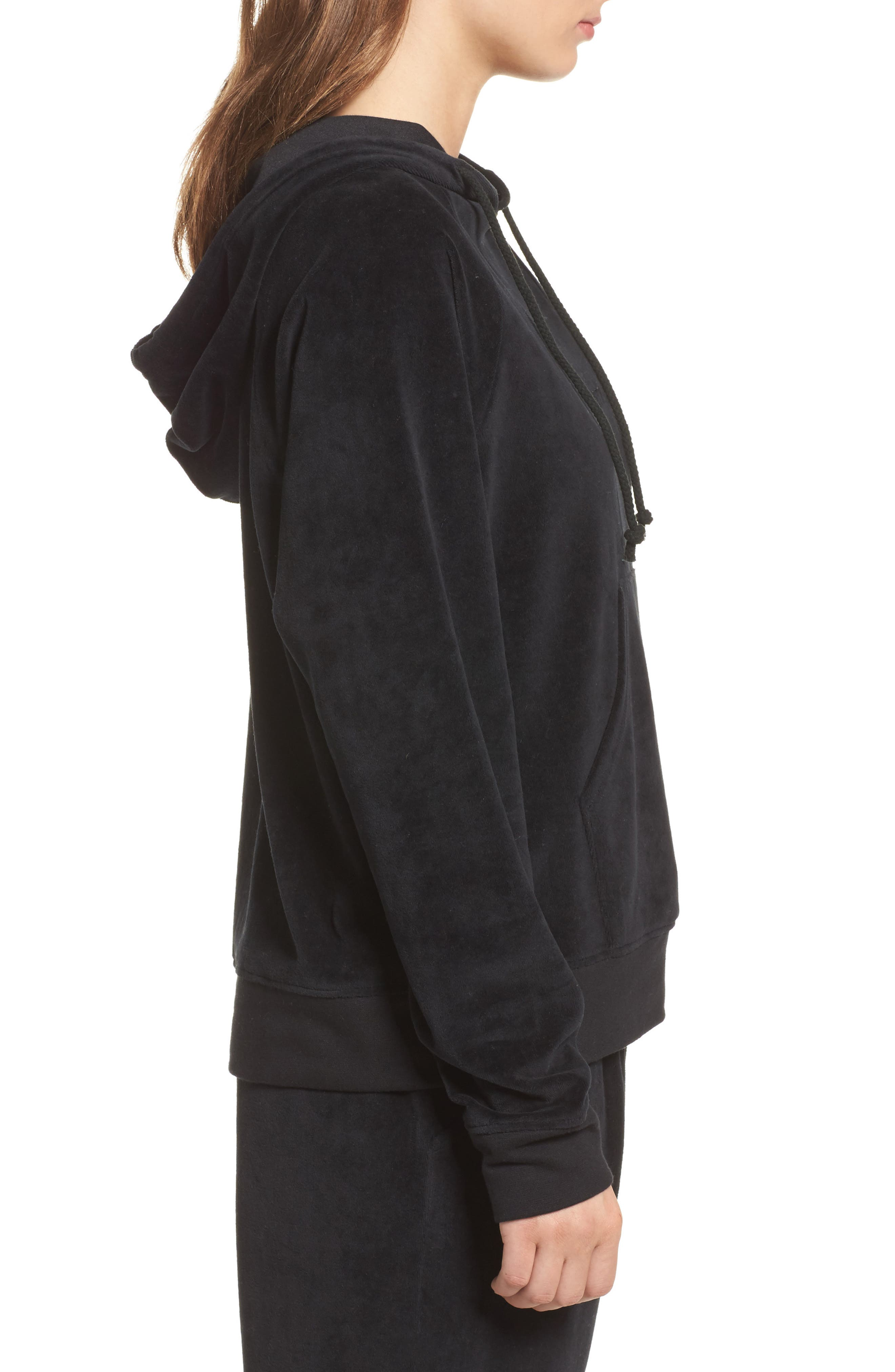 Brunette Embroidered Velour Hoodie,                             Alternate thumbnail 3, color,